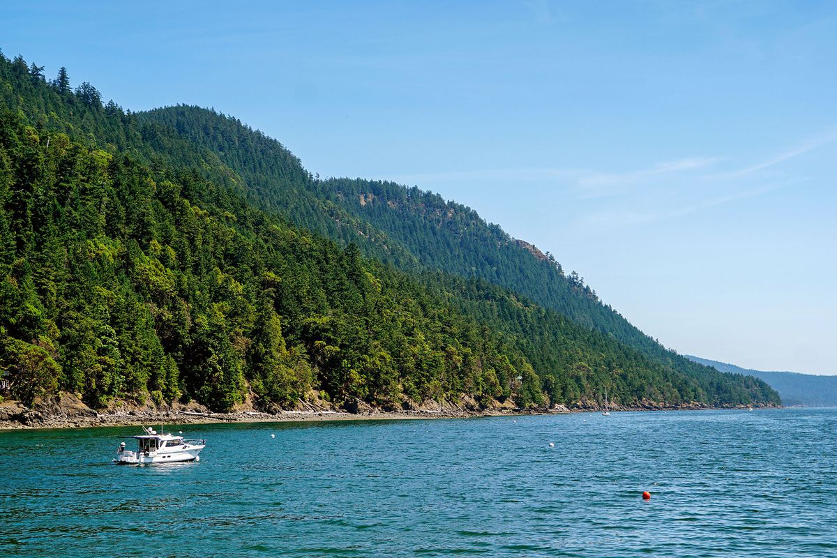 A view of a boat traveling near the picturesque greenery of Orcas Island