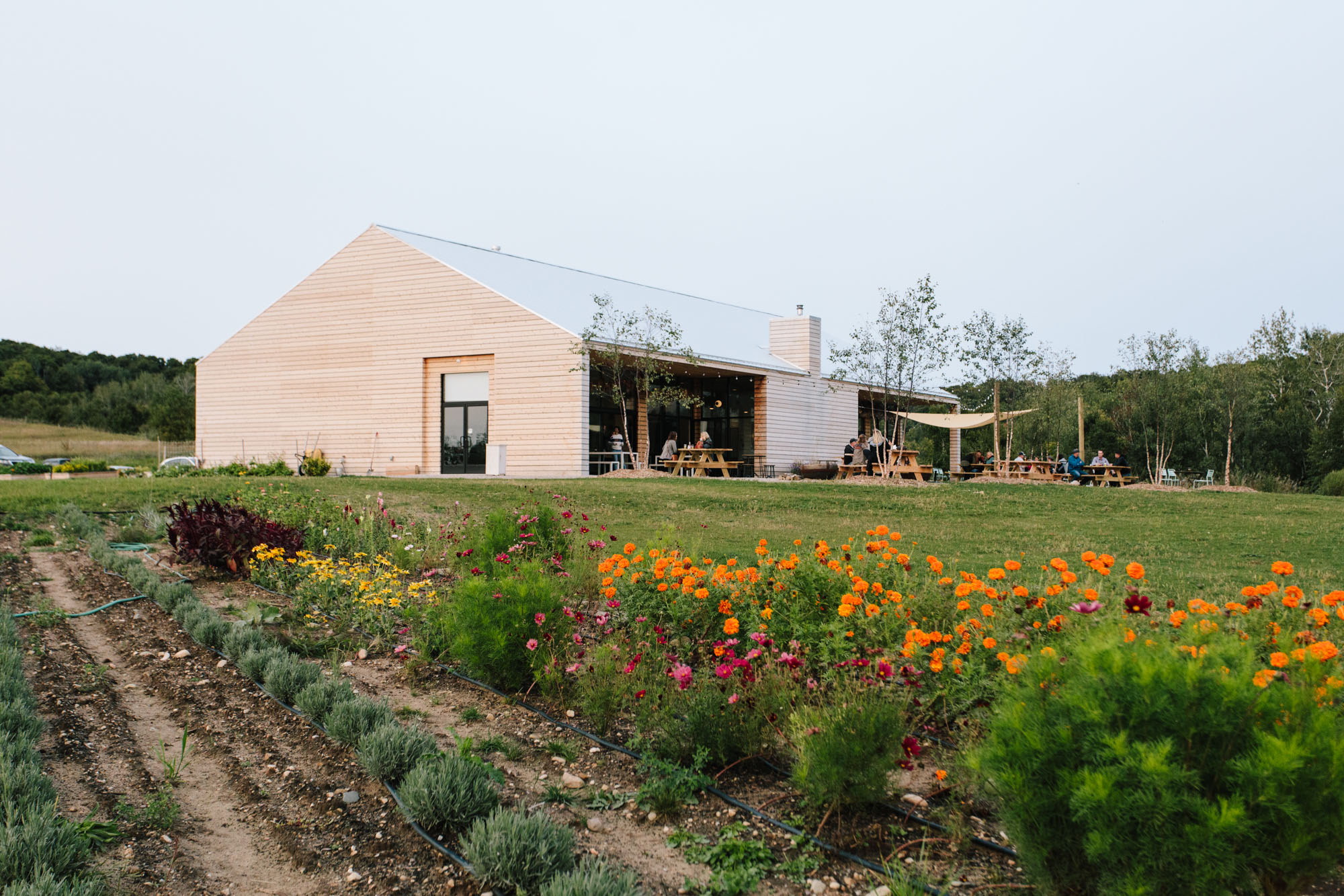 A farm house with wood sides and a metal roof surrounded by a beautiful meadow with flowers.
