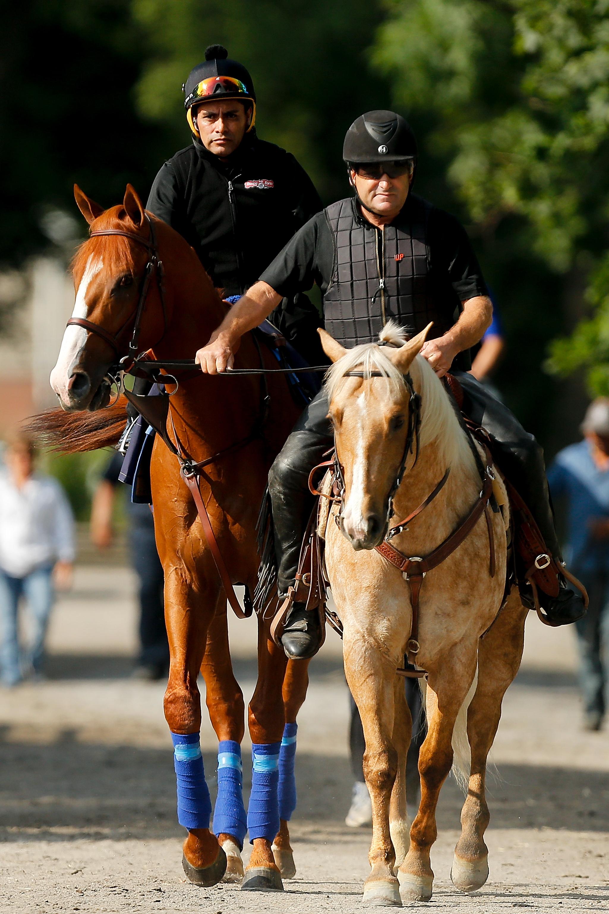 150th Belmont Stakes - Previews