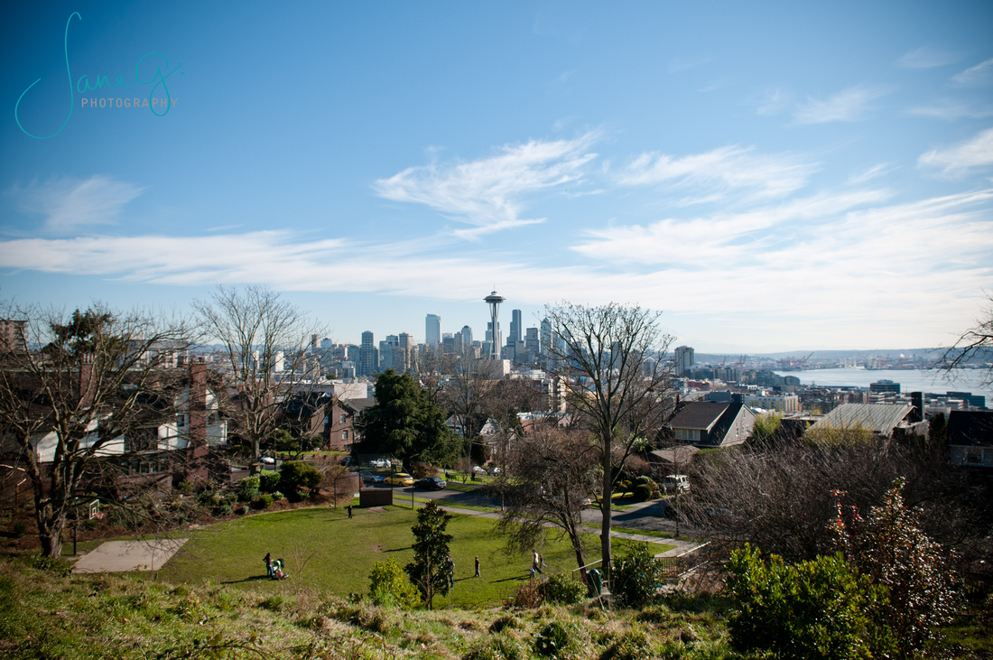 Seattle Skyline From North by Jane G