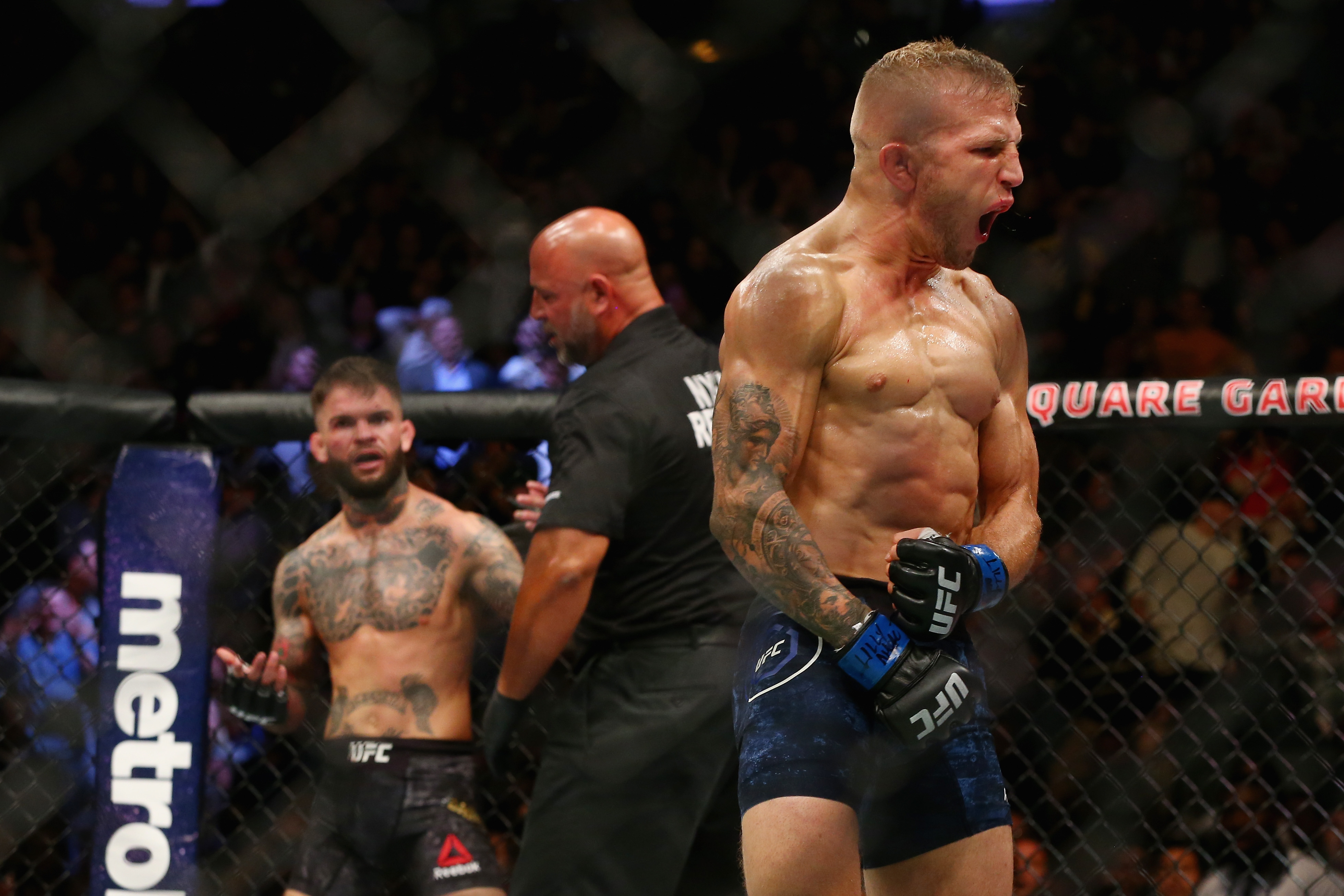 UFC 217: Garbrandt v Dillashaw
