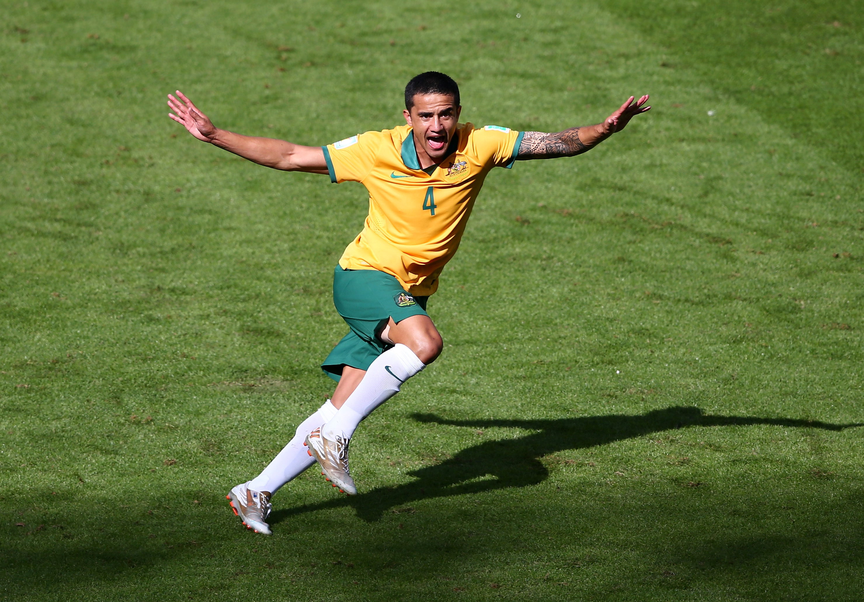 Australia v Netherlands: Group B - 2014 FIFA World Cup Brazil
