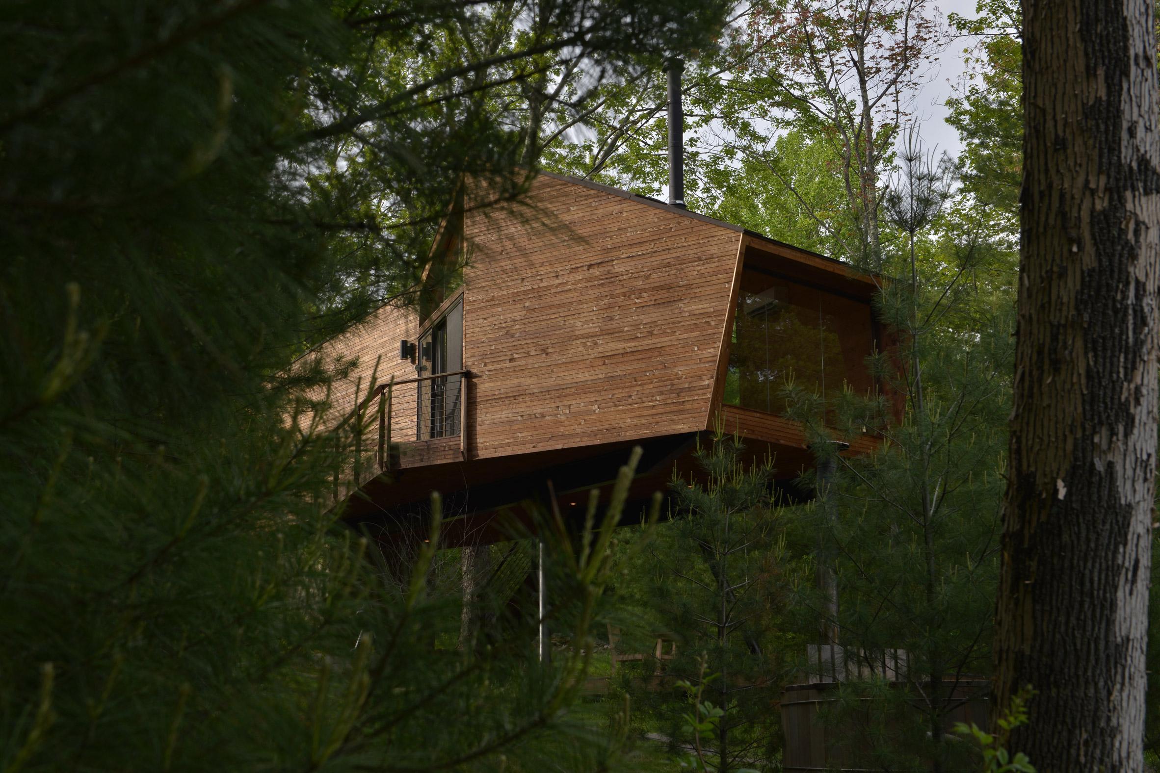 Cedar house in woods
