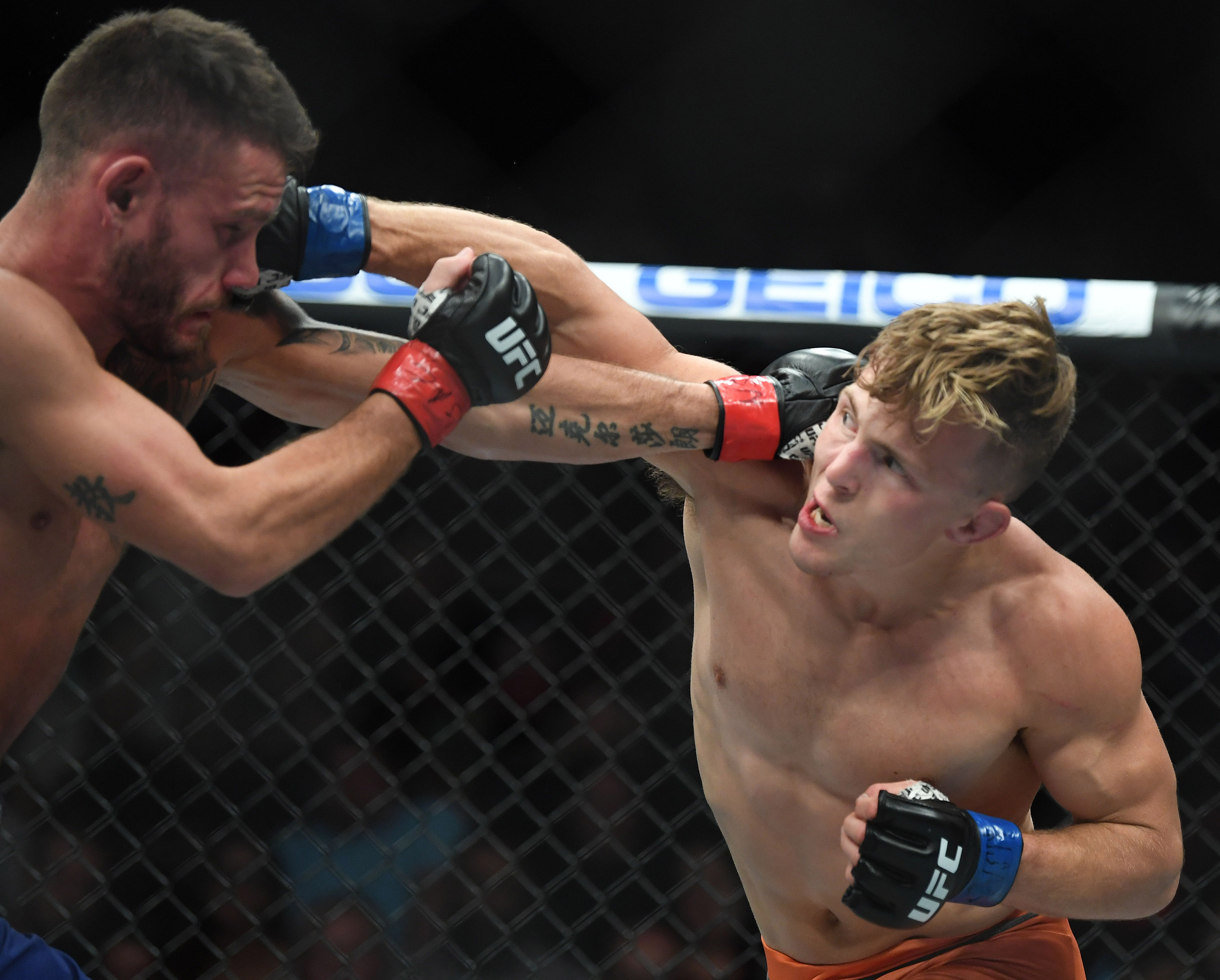 MMA: TUF 27 Finale-Cucciniello vs Katona