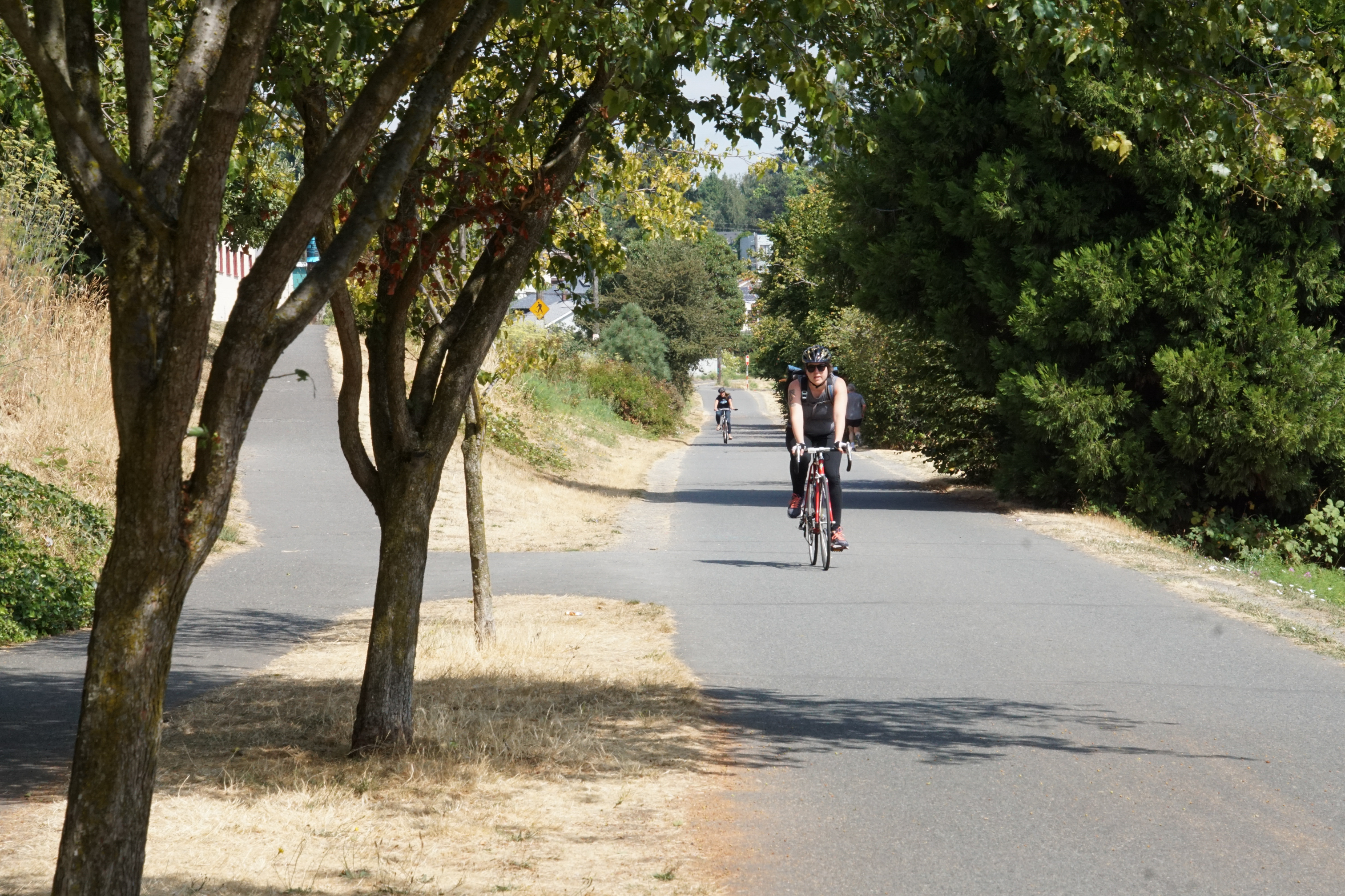 Seattle Parks Board To Vote On E Bike Trail Use