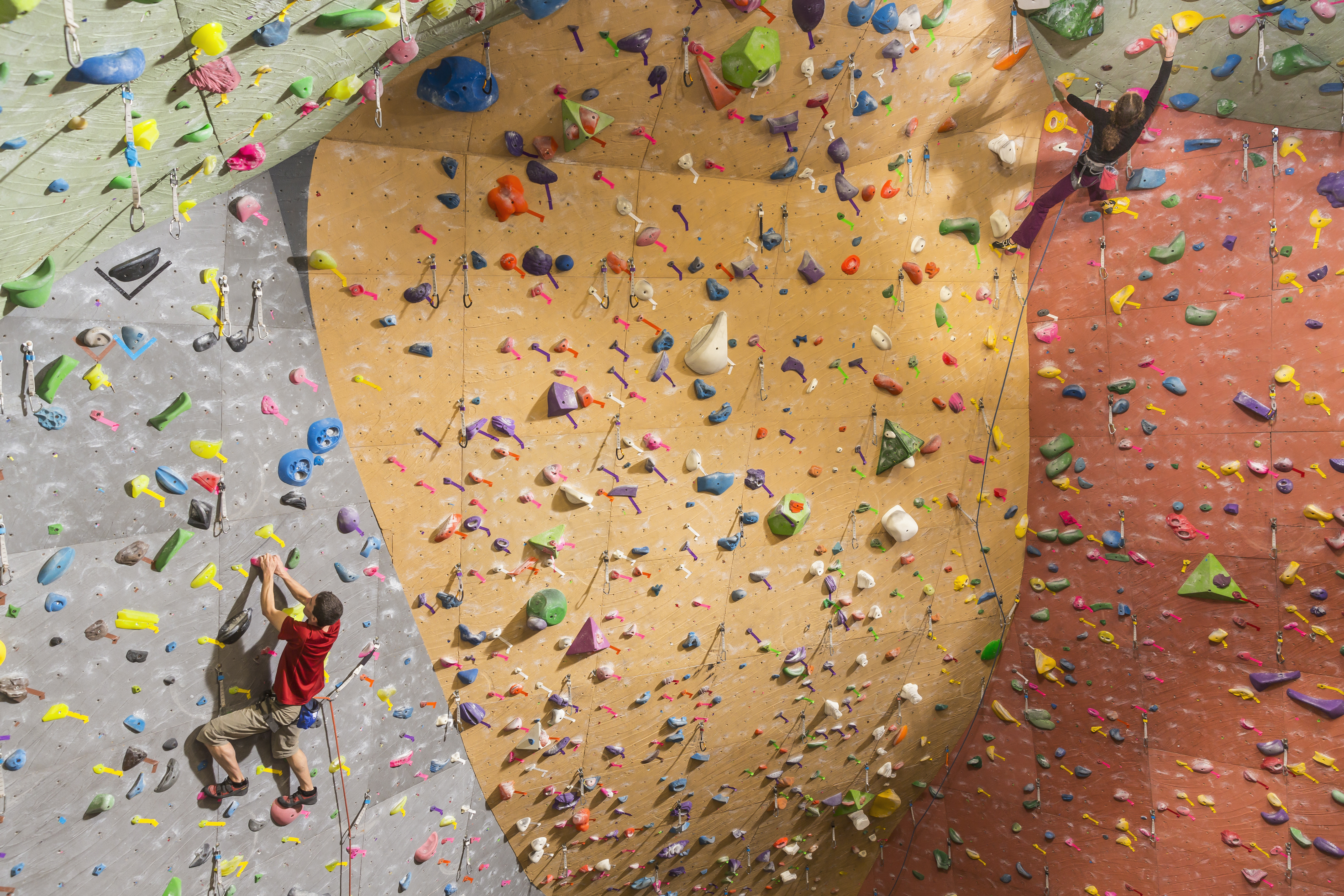 A gray, orange, and red wall take irregular paths upwards and curve onto a ceiling. Each has colorful holds for grabbing. A man is climbing up the gray wall.