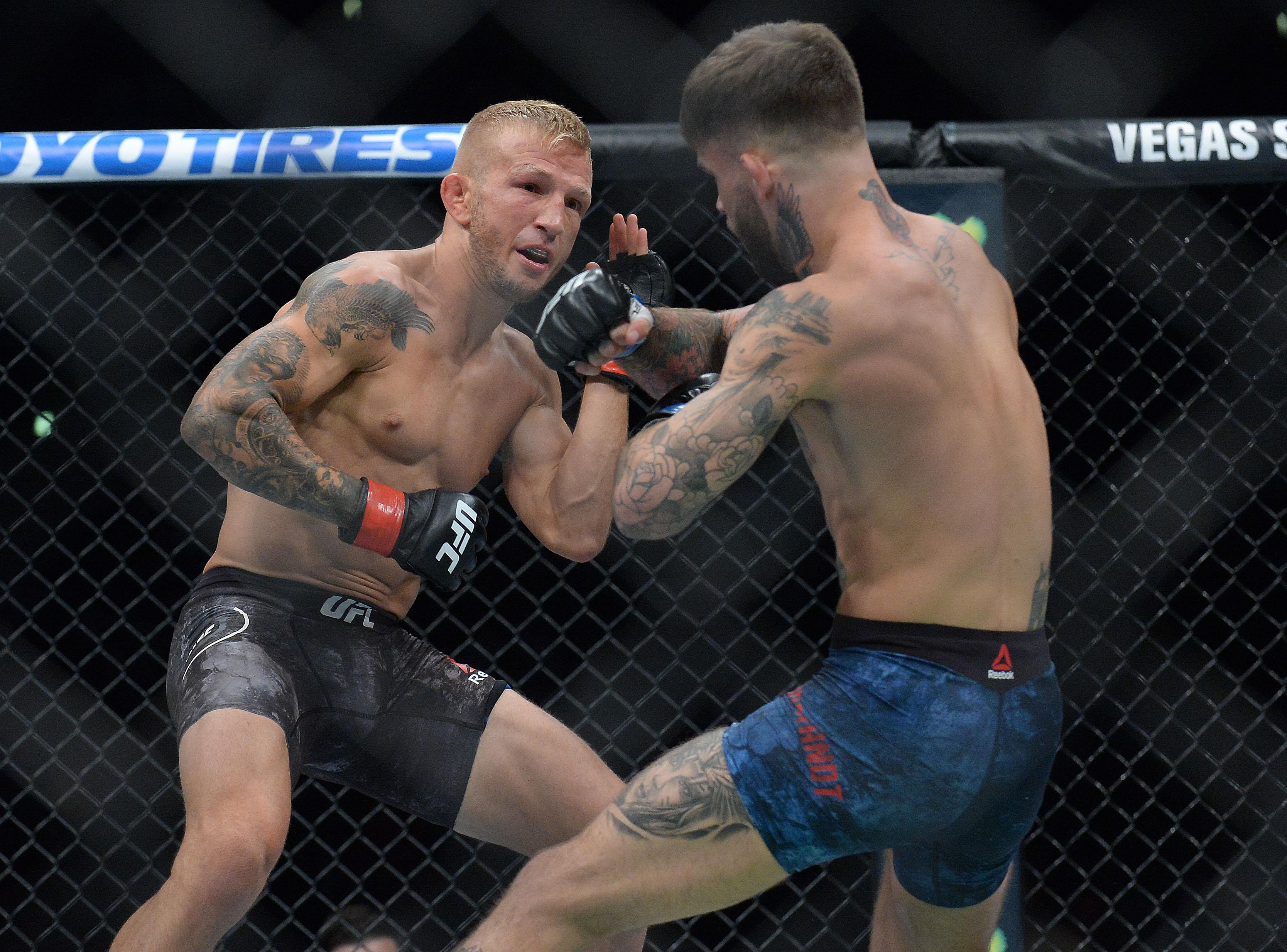 MMA: UFC 227-Dillashaw vs Garbrandt