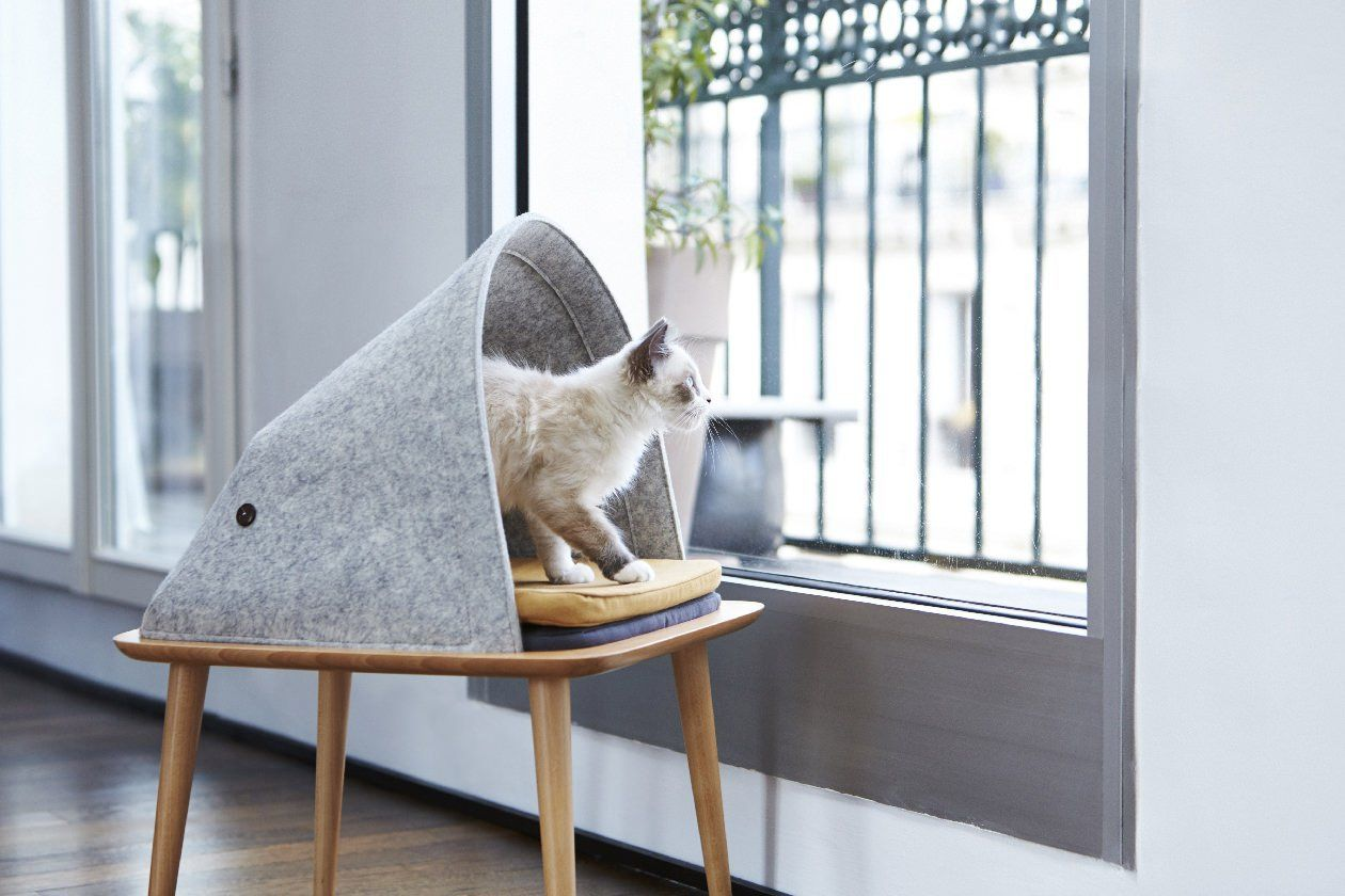 Tuft & Paw Is Basically the West Elm of Cat Furniture