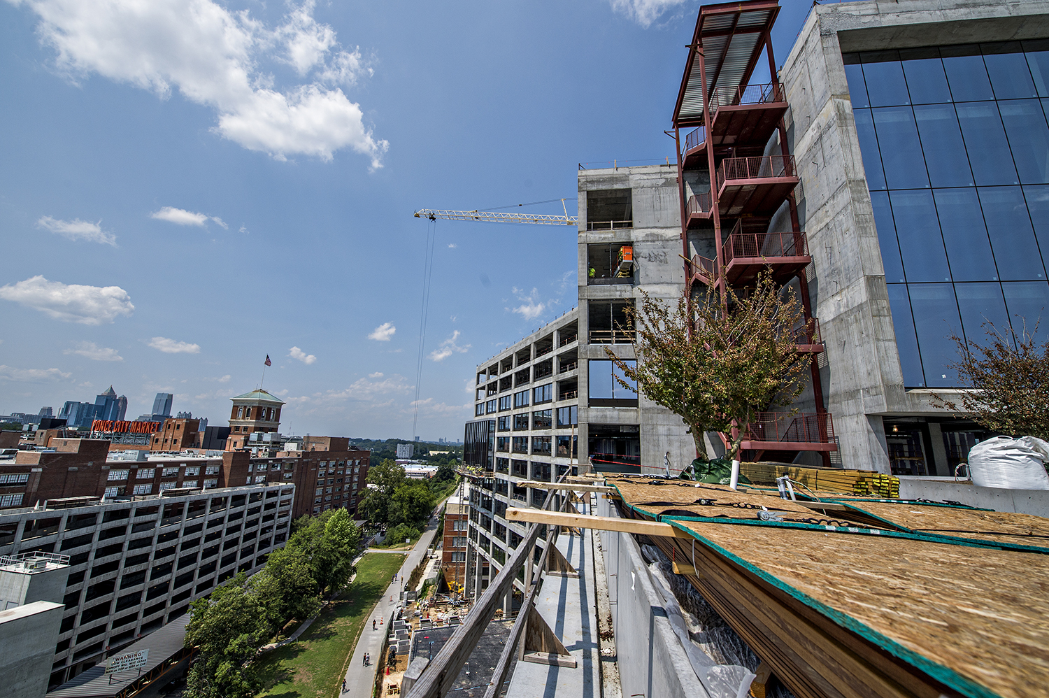 Trees installed on a 725 Ponce commons area, overlooking the Beltline's Eastside Trail.