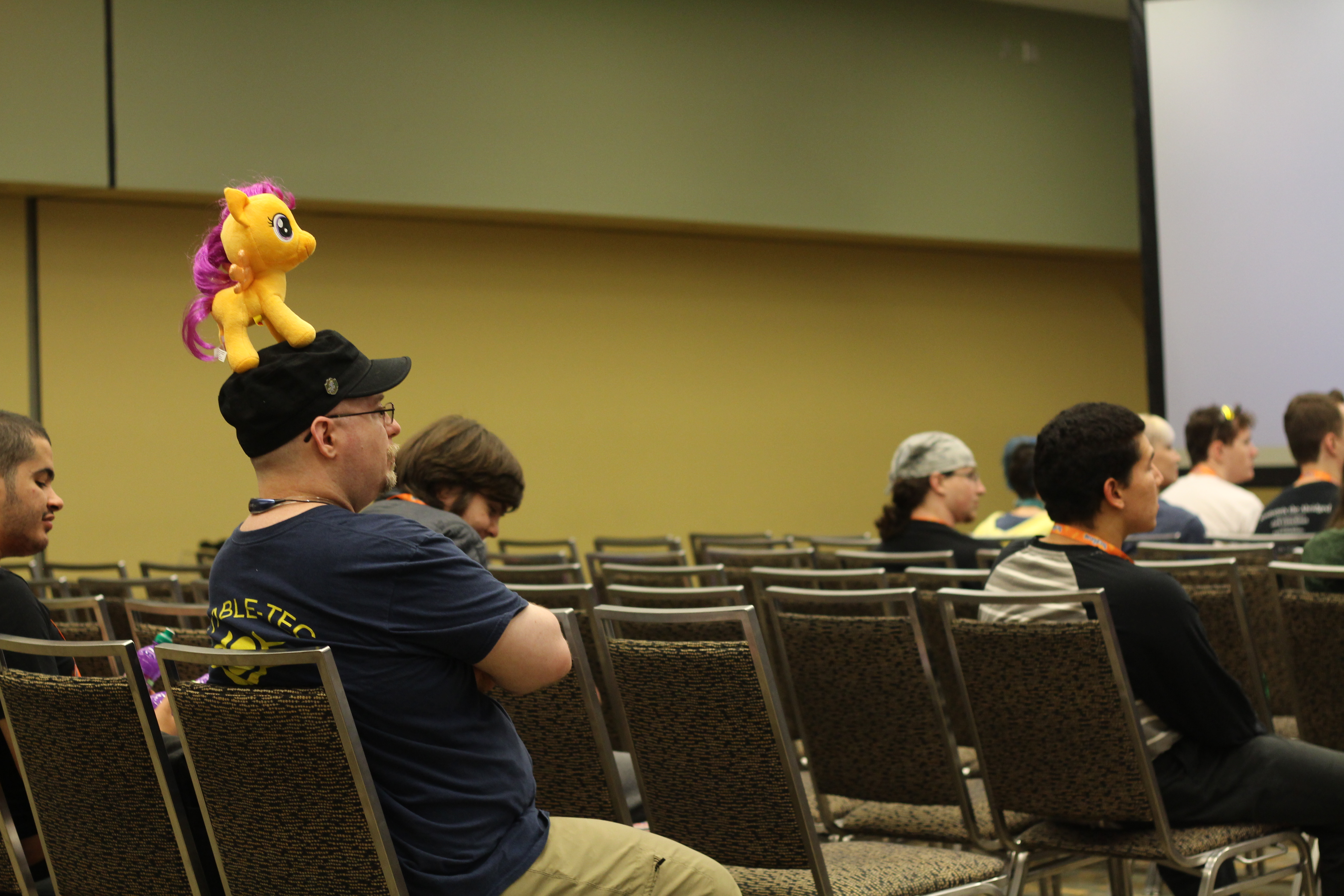 Friendship was magic: How Bronies are preparing for the end of My Little Pony
