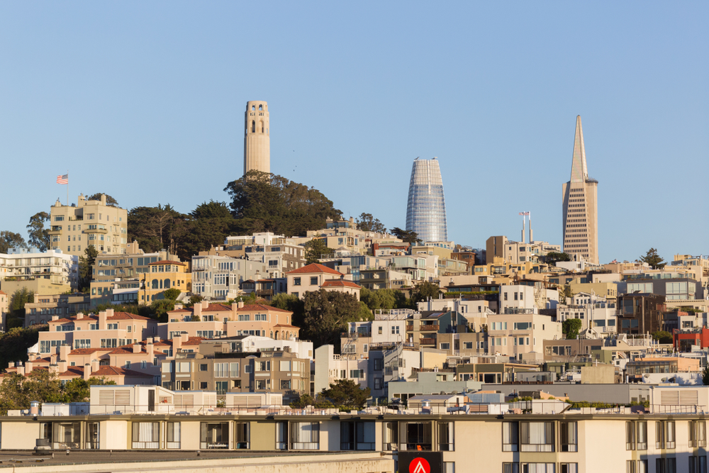 Coit Tower, Salesforce Tower, and the Transamerica Pyramid all peeking over the top of a hill.