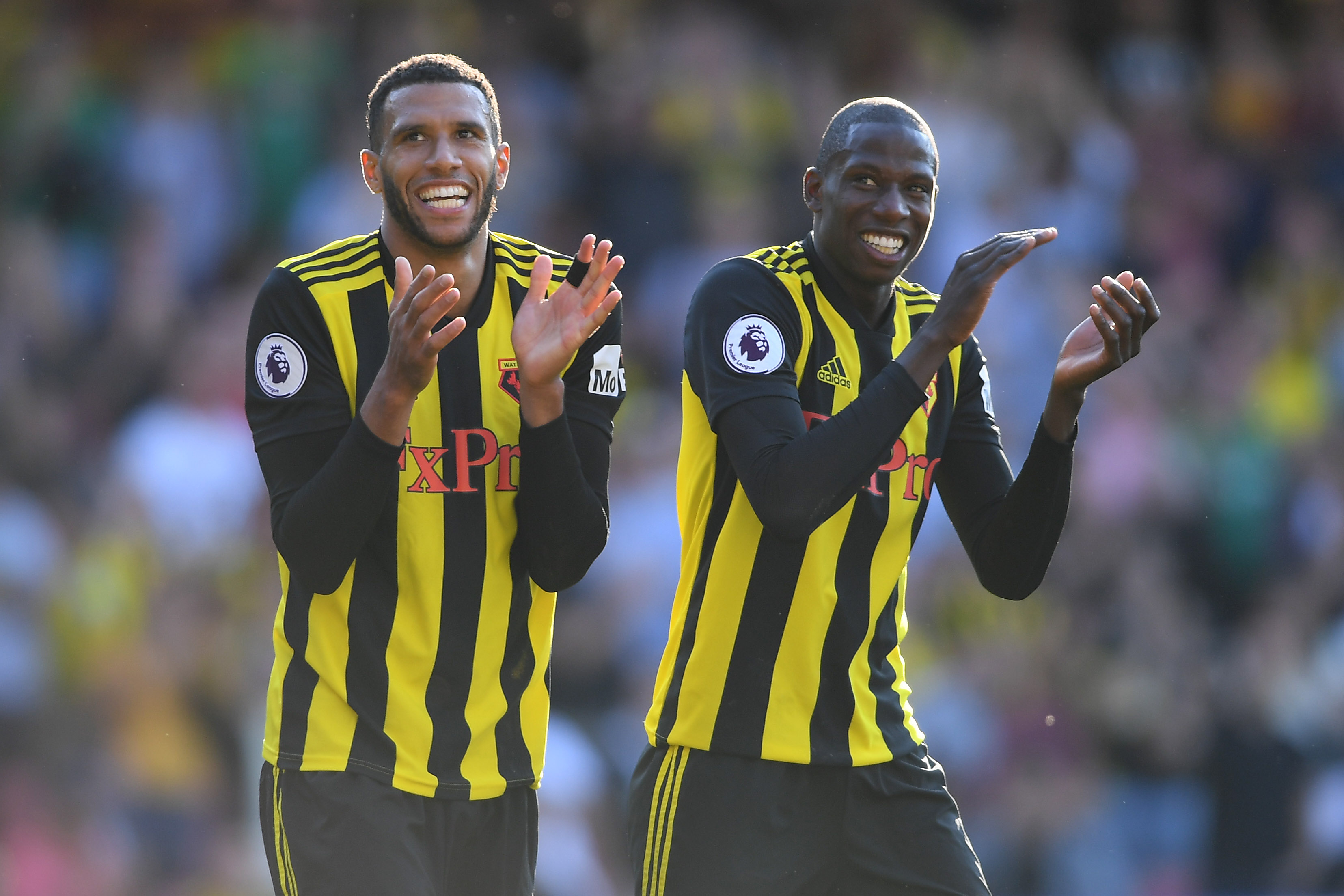 Etienne Capoue and Abdoulaye Doucoure - Watford FC - Premier League
