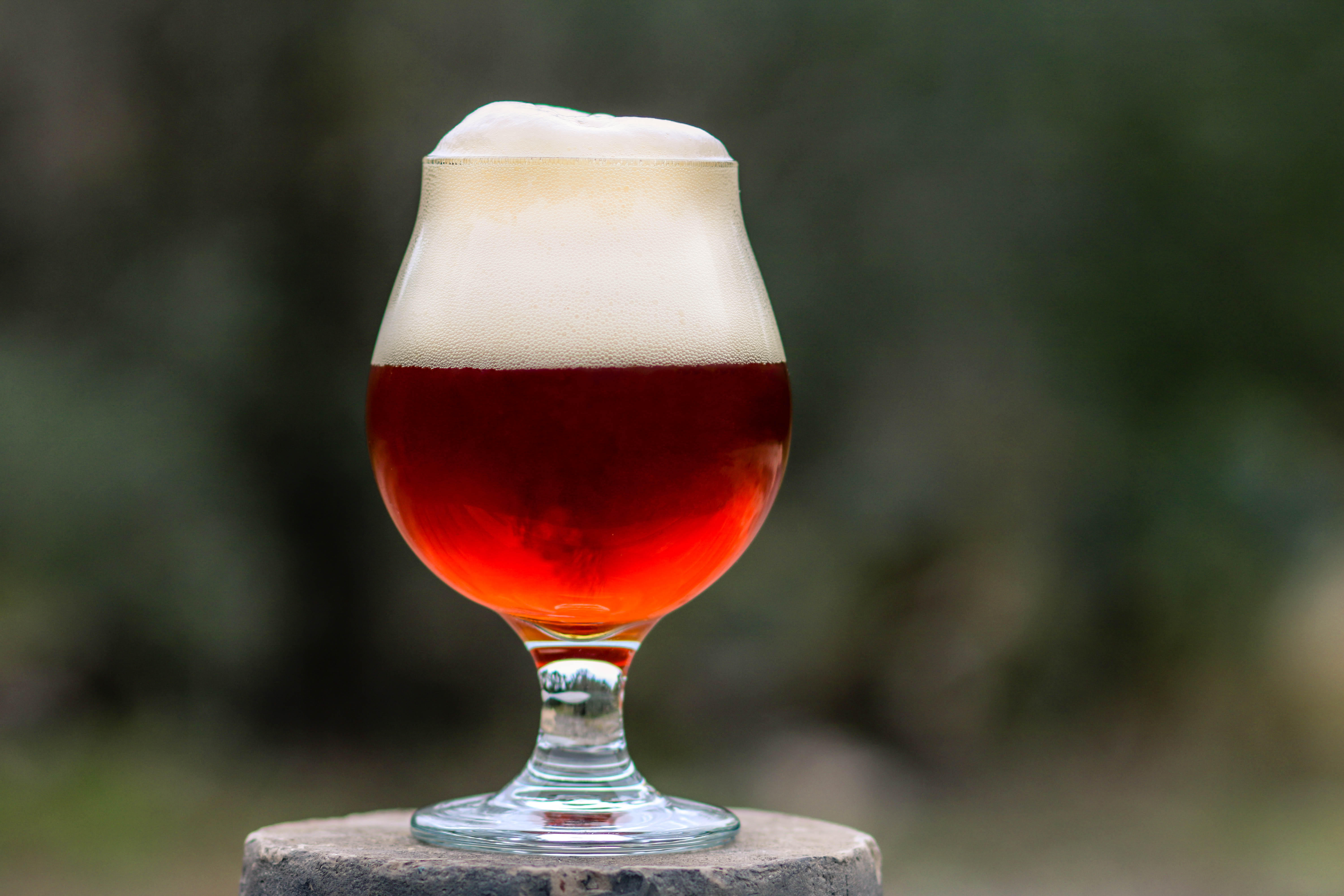 Ona Amber beer from Roughhouse Brewing