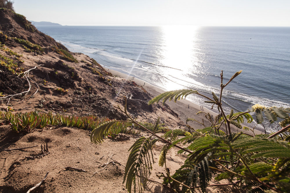 Get to Know the Hidden Away Fort Funston Coastal Park