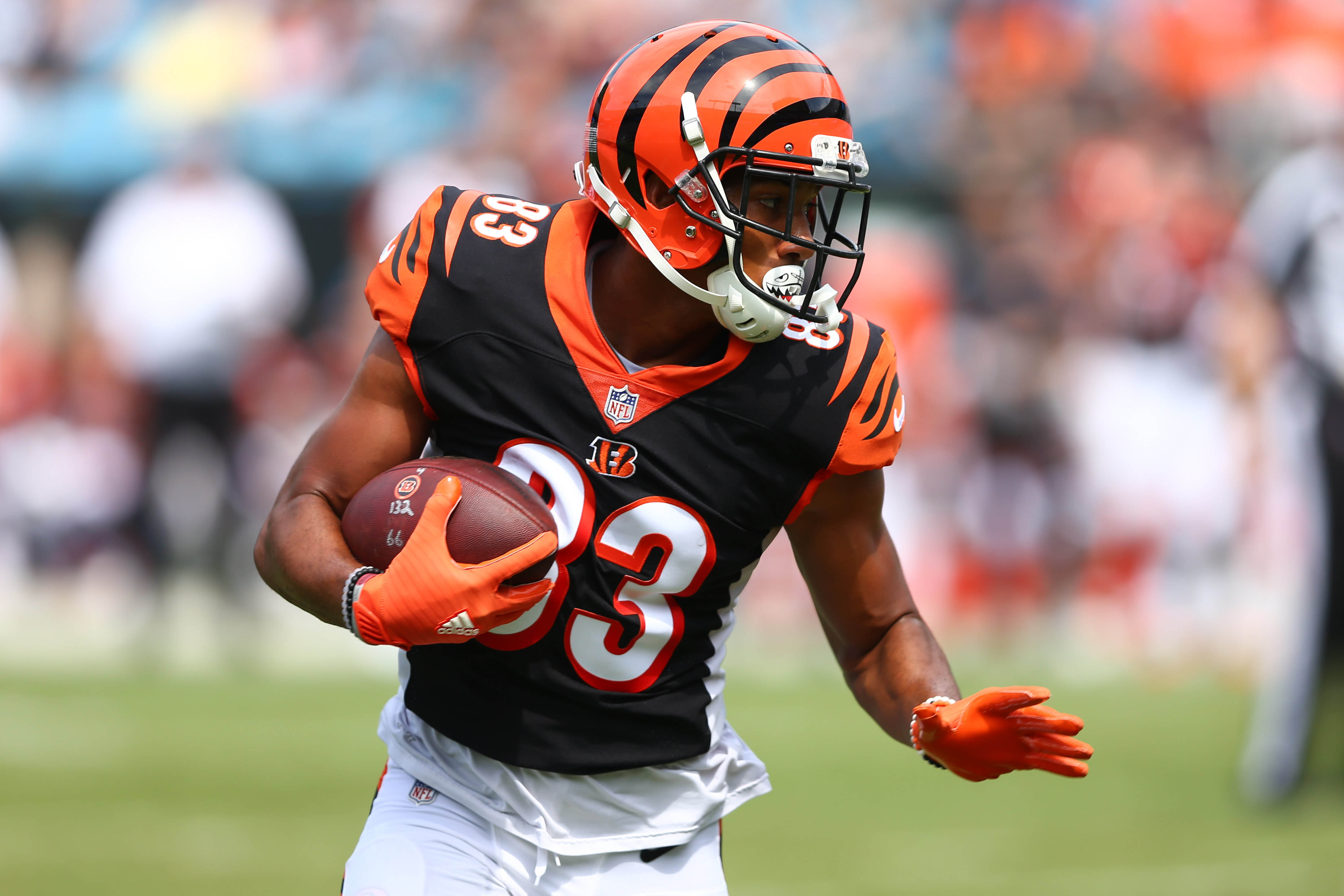 NFL: Cincinnati Bengals at Carolina Panthers