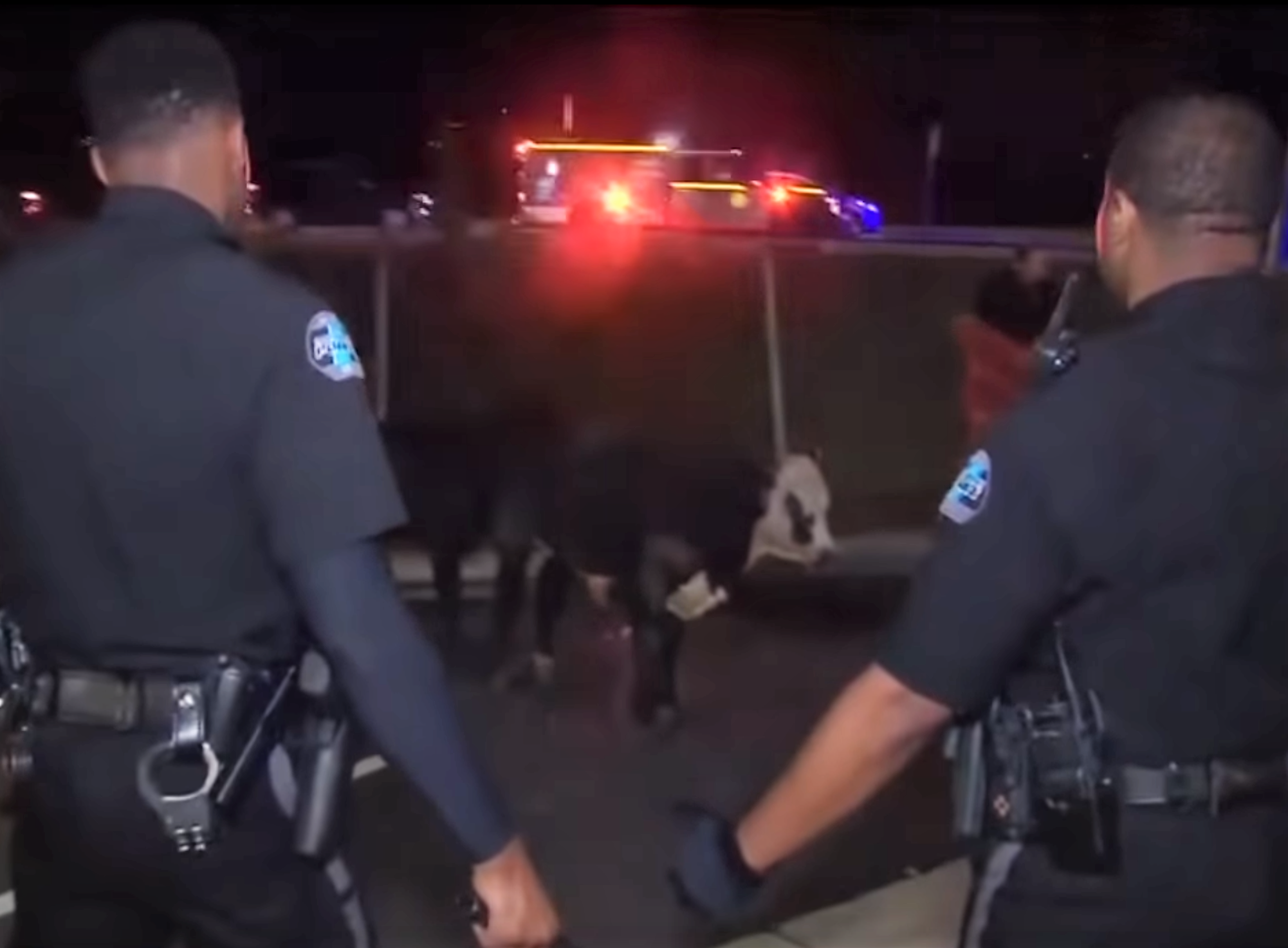 a picture of cops trying to catch cows