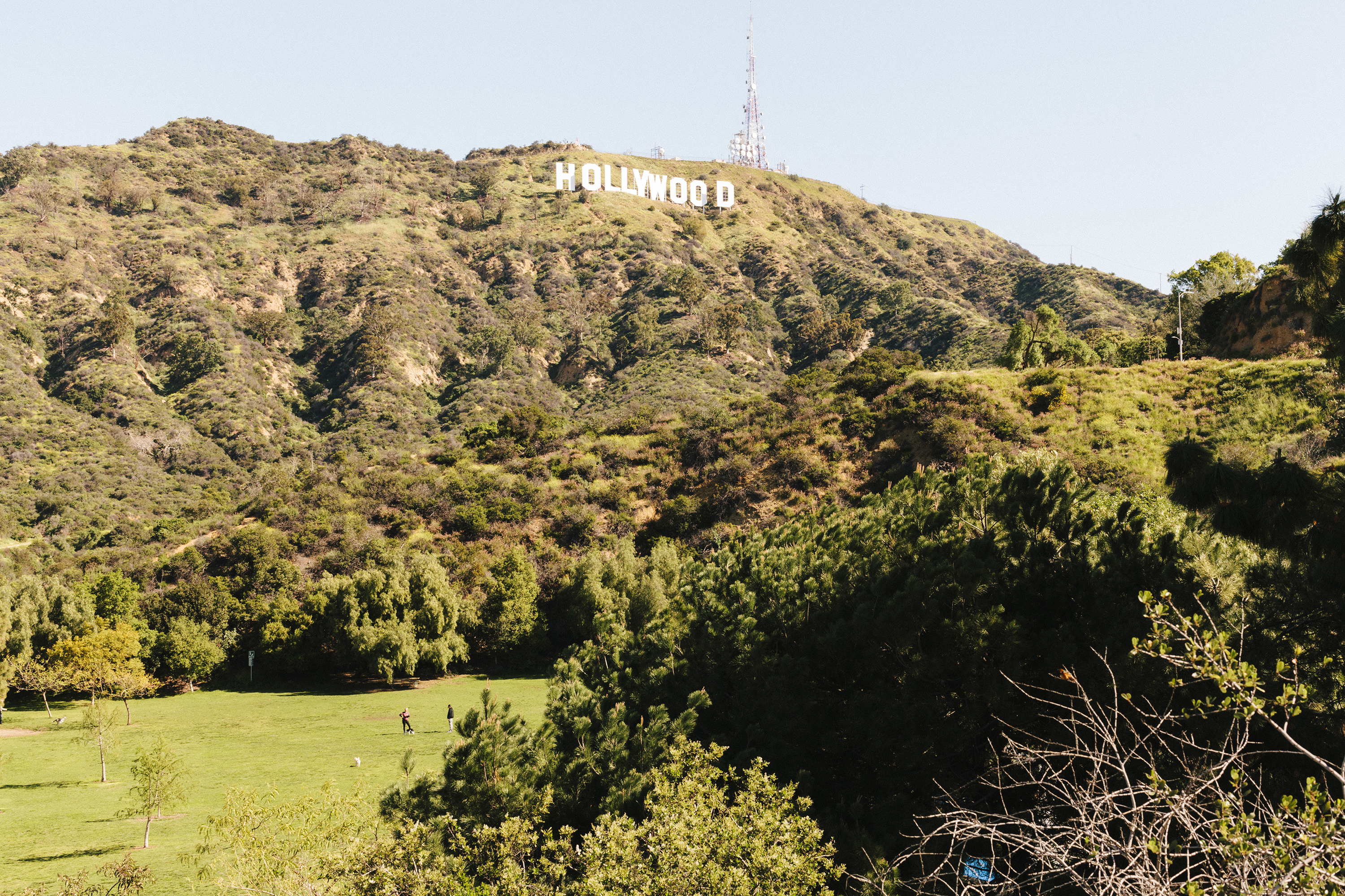 A valley and mountain. On the mountain is a sign that reads Hollywood.