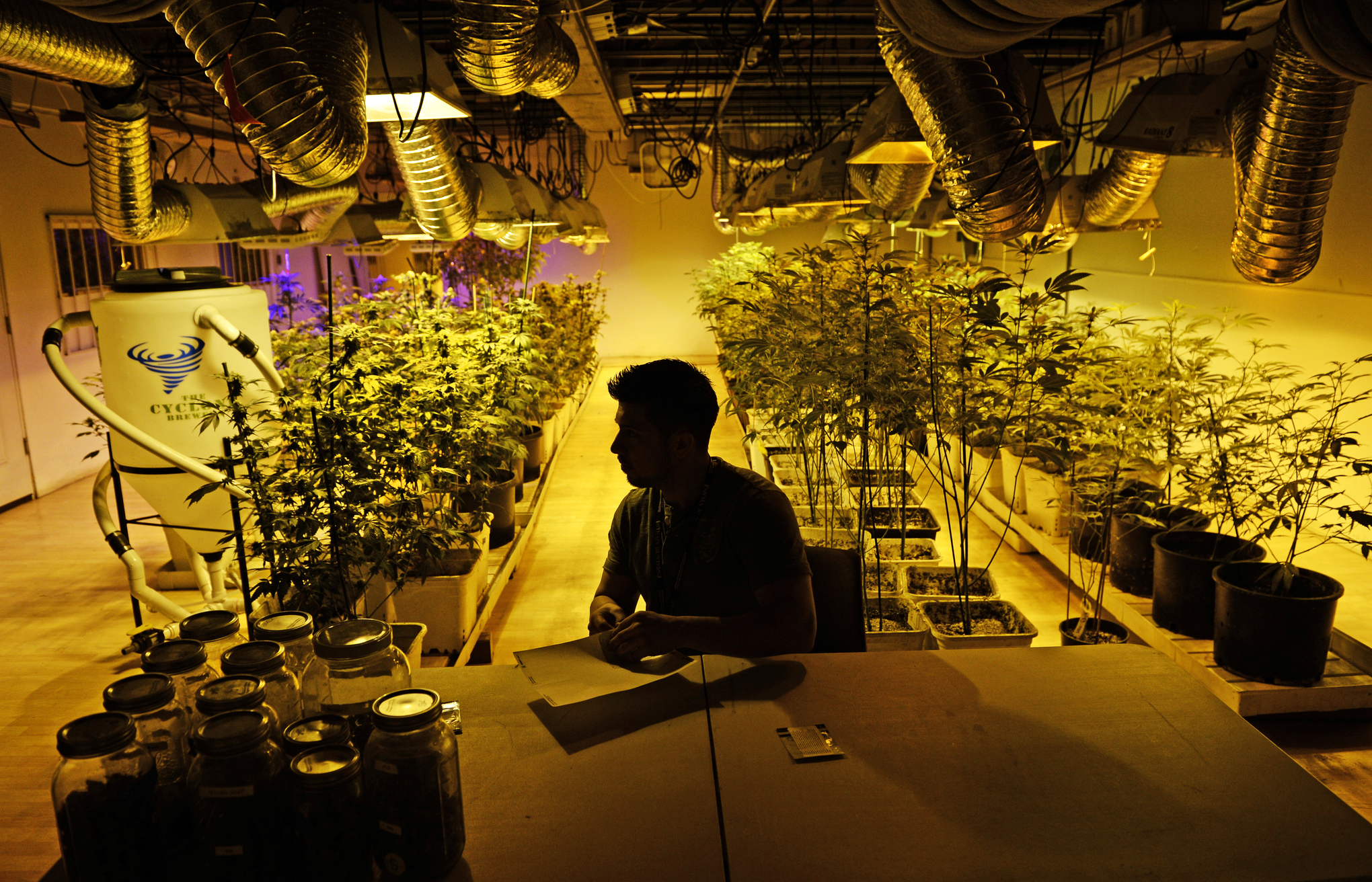A marijuana business manager prepares for the first day of recreational sales in Denver, Colorado.