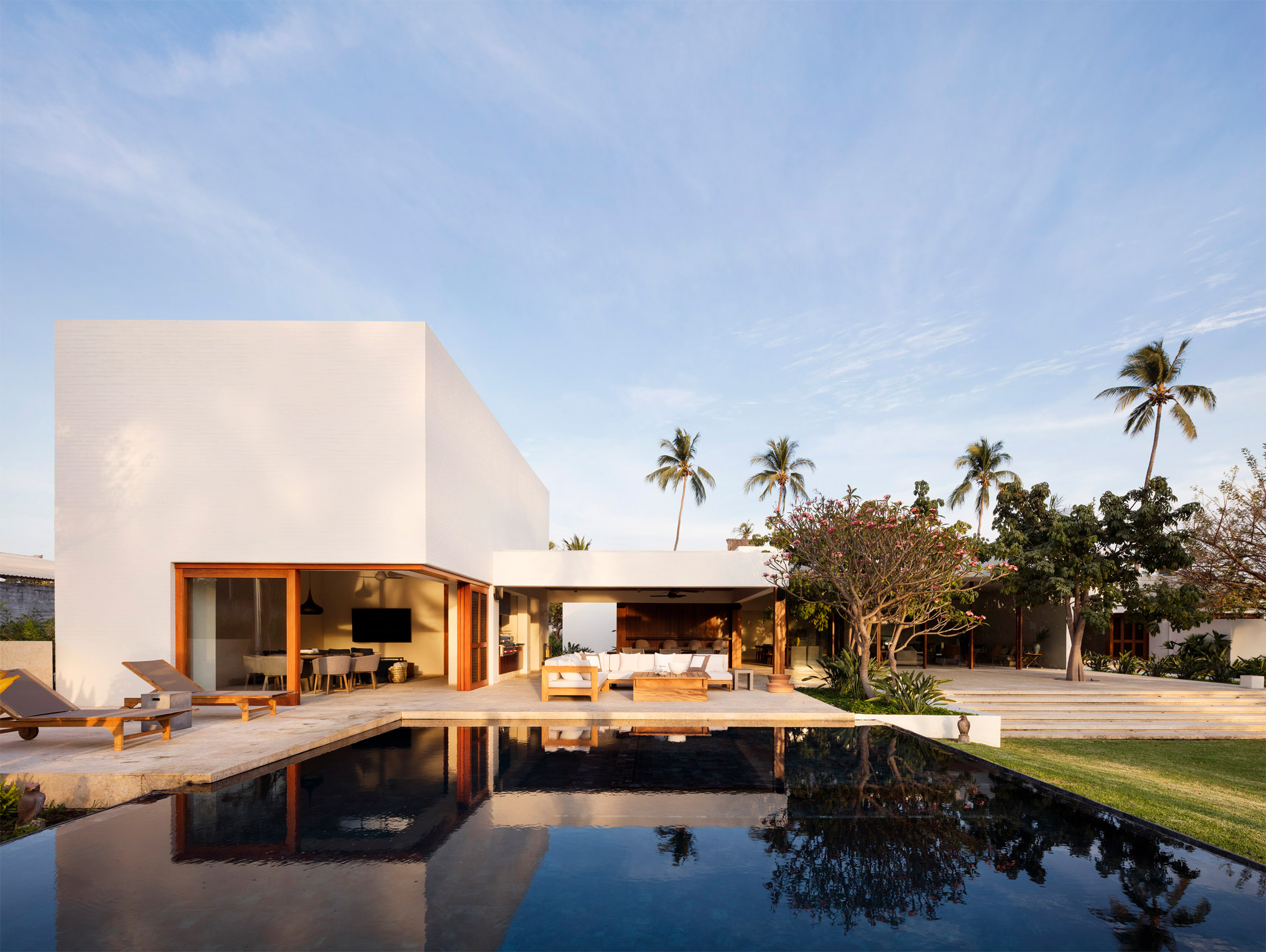 Tropical modern house has a courtyard filled with palm trees