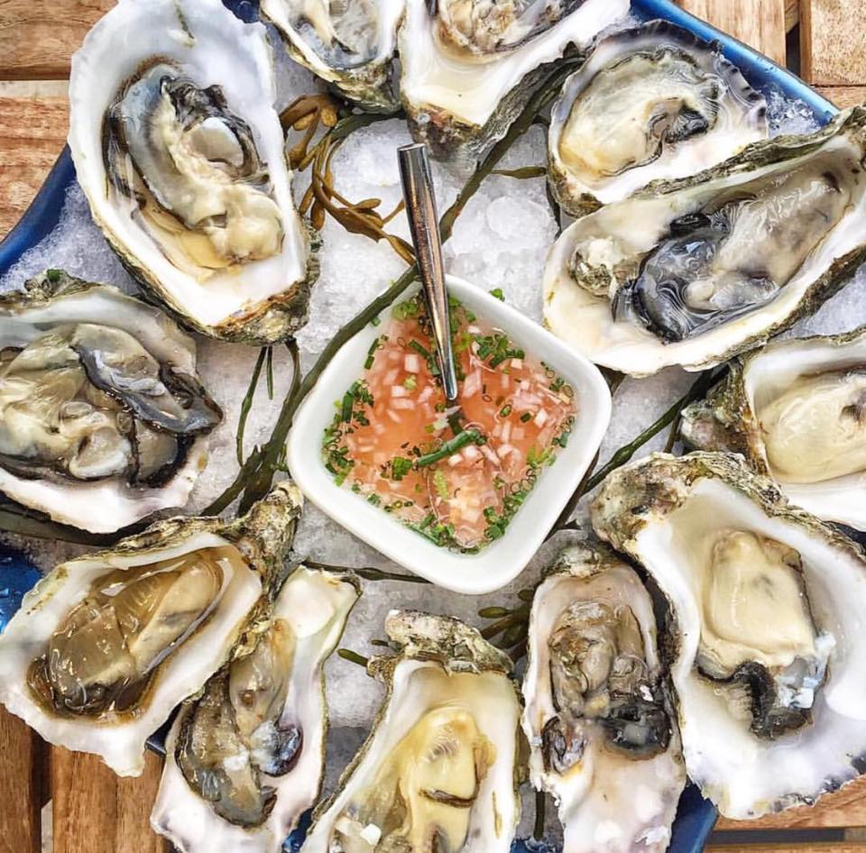 Andiron oysters