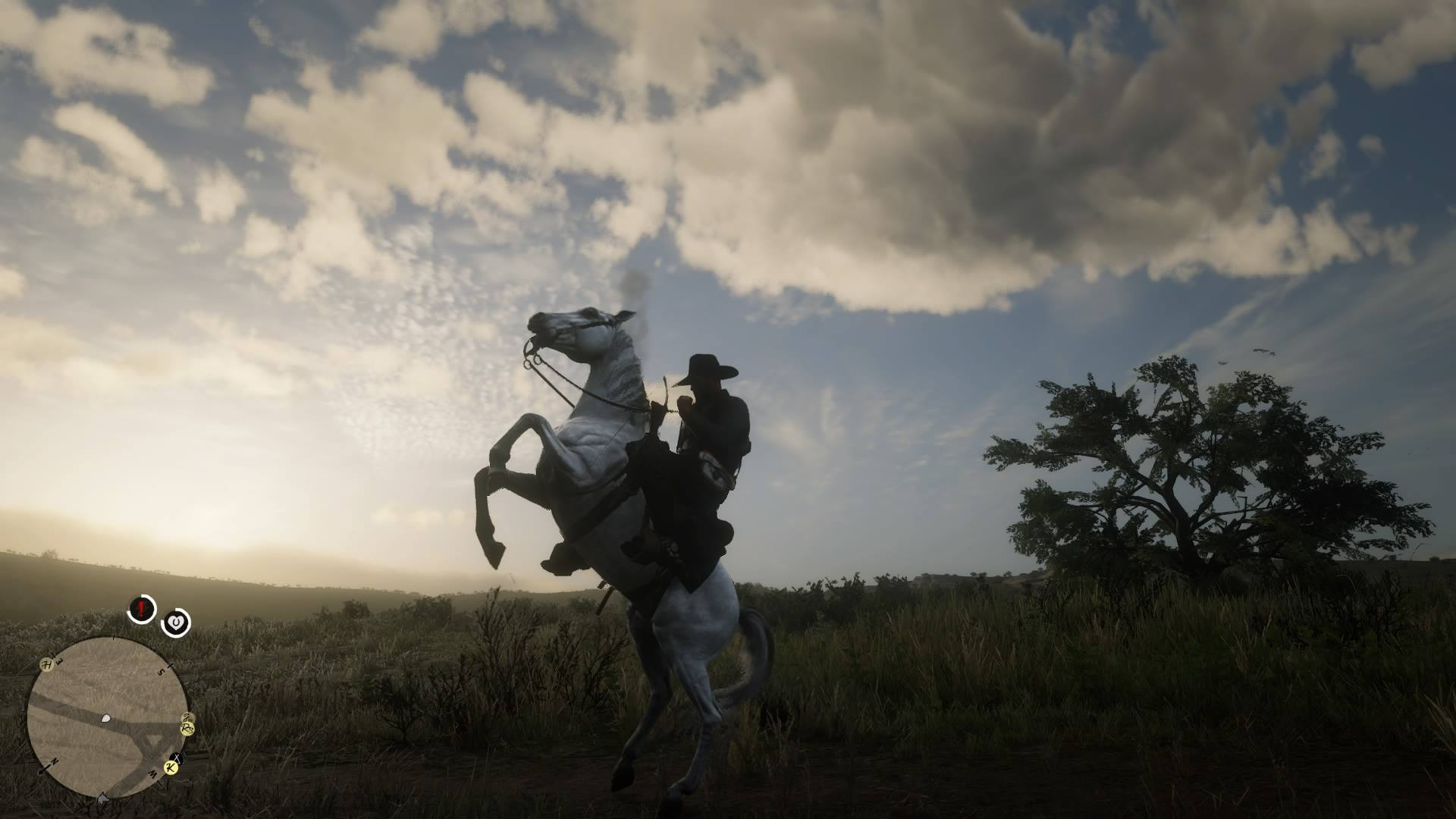 Red Dead Redemption 2 best horse guide: the white Arabian