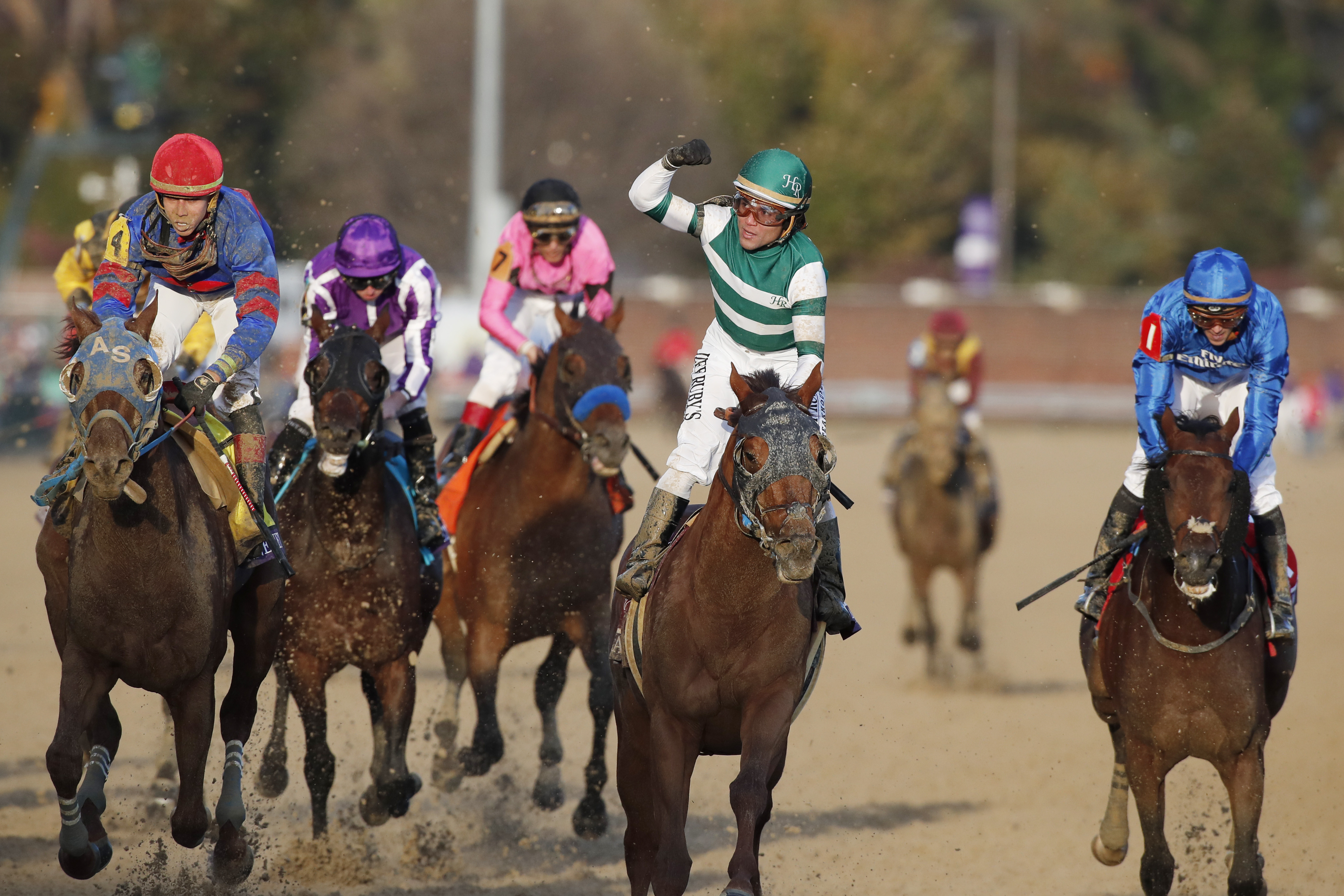 Horse Racing: 35th Breeders Cup World Championships