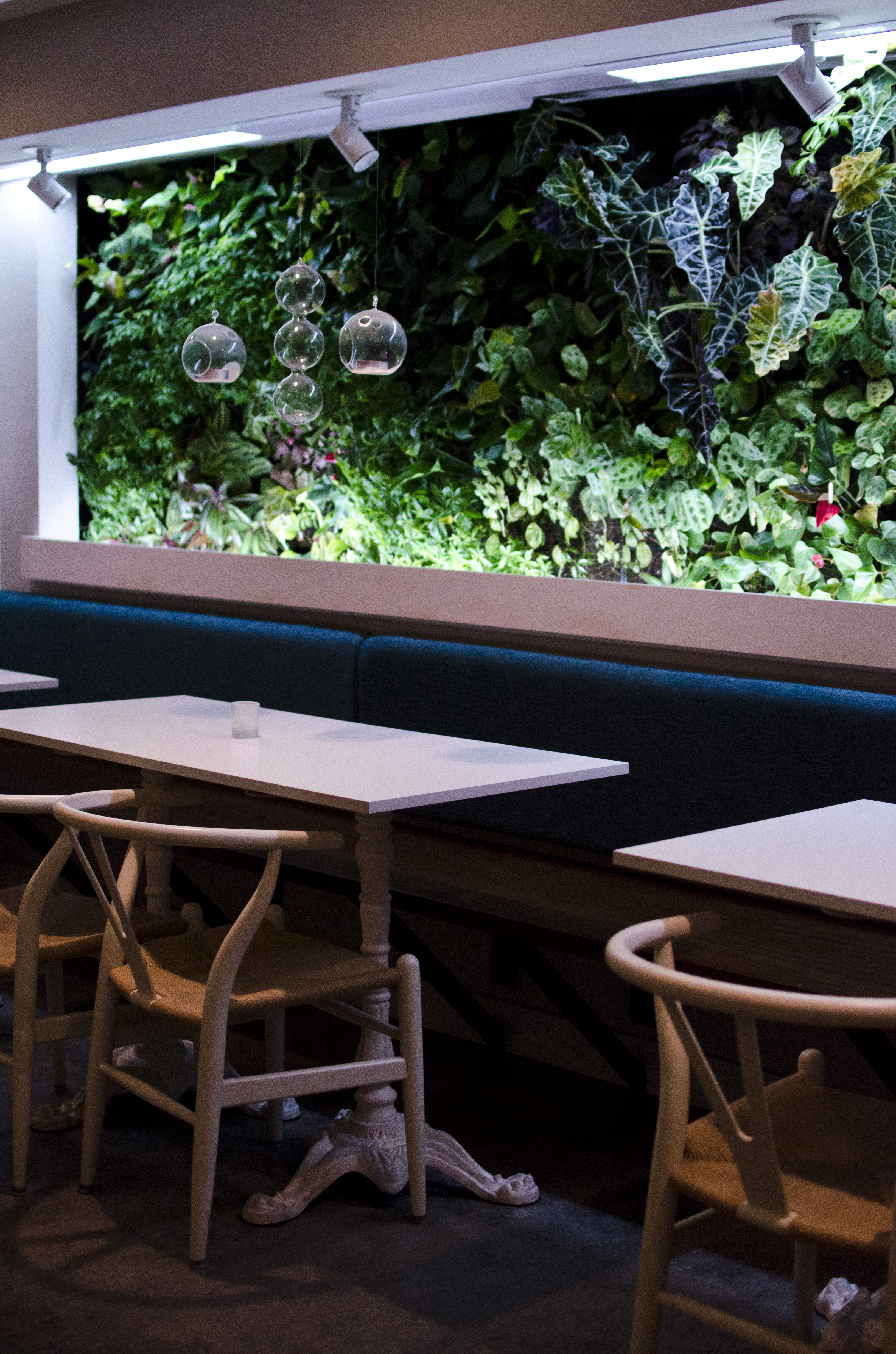 The 38 Essential Boston Restaurants, October 2013