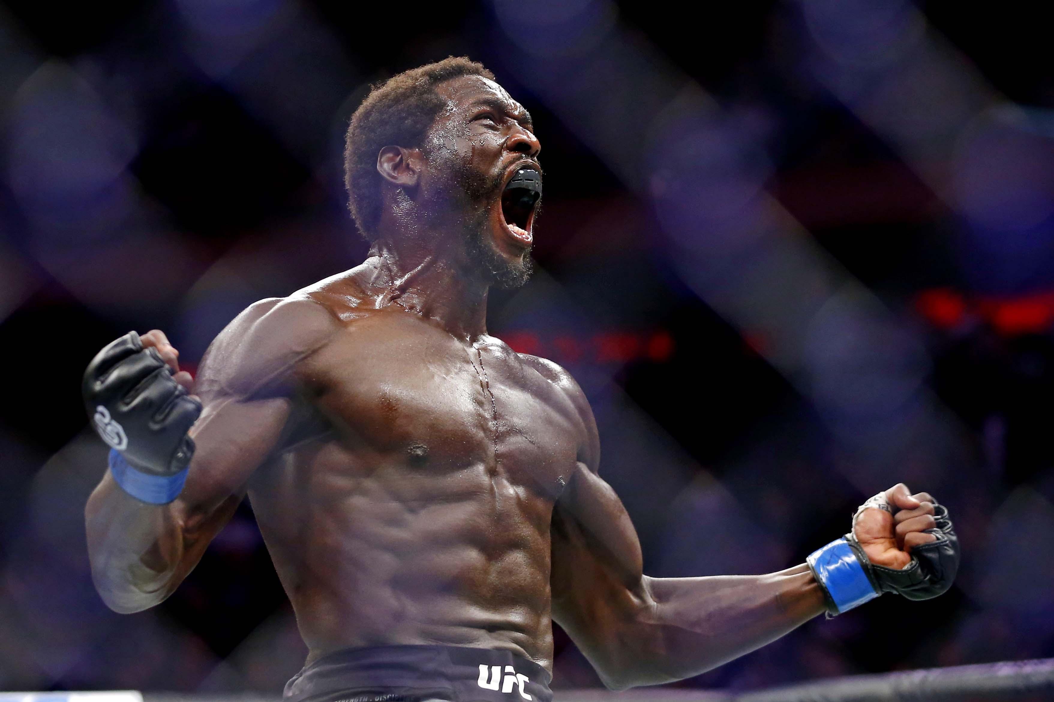MMA: UFC 230 - Branch vs Cannonier