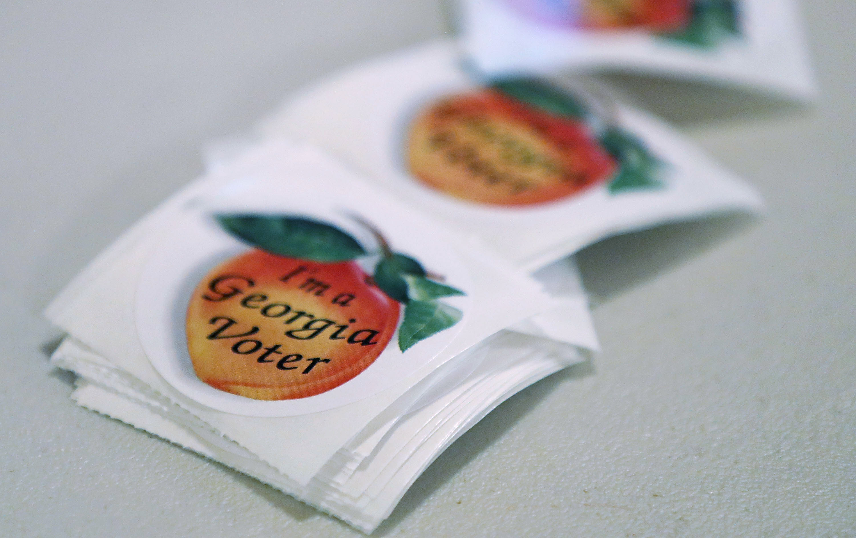 Voters Go To The Polls In GA 6th Congressional District Race