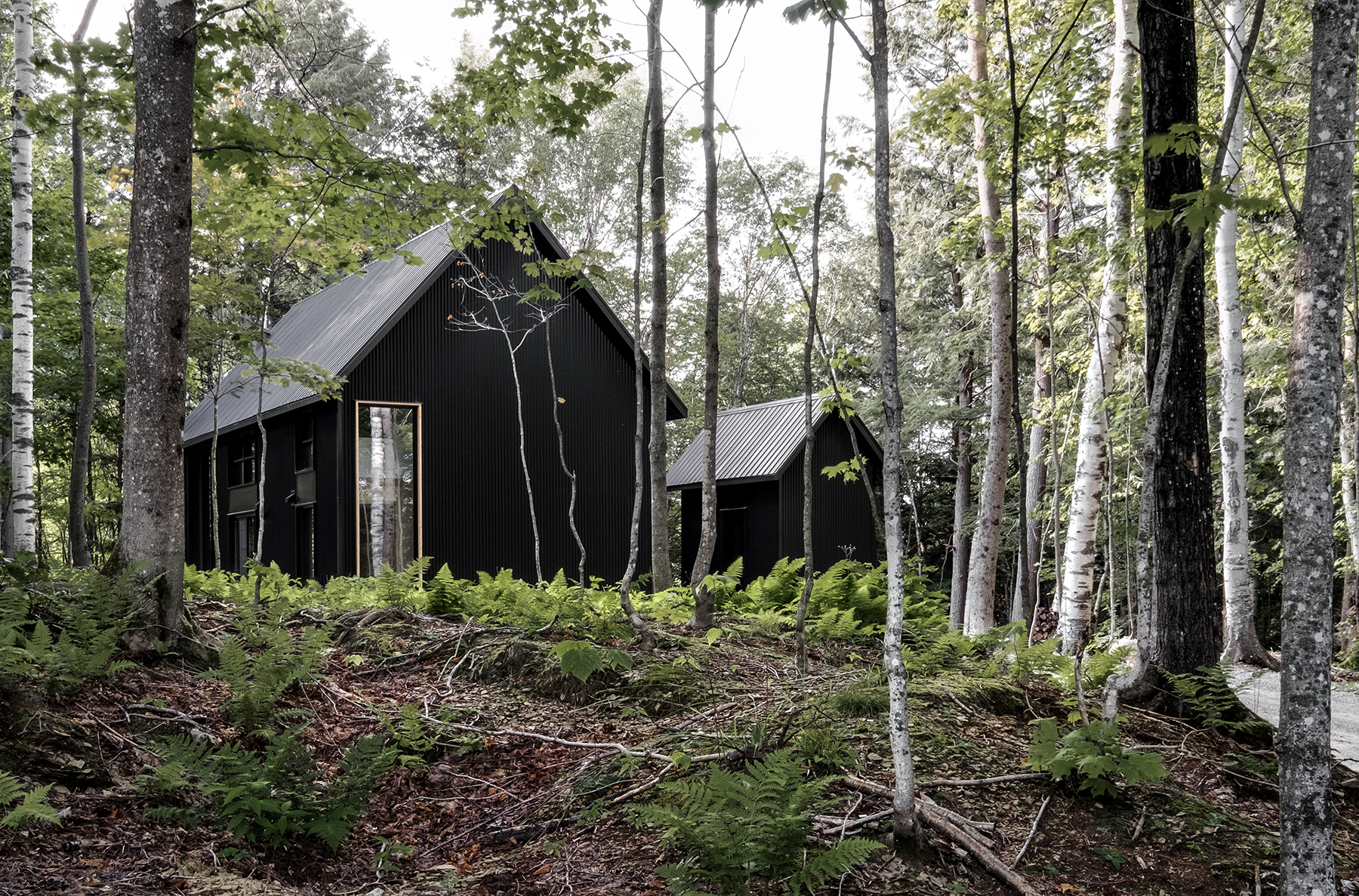 Black cabin in forest