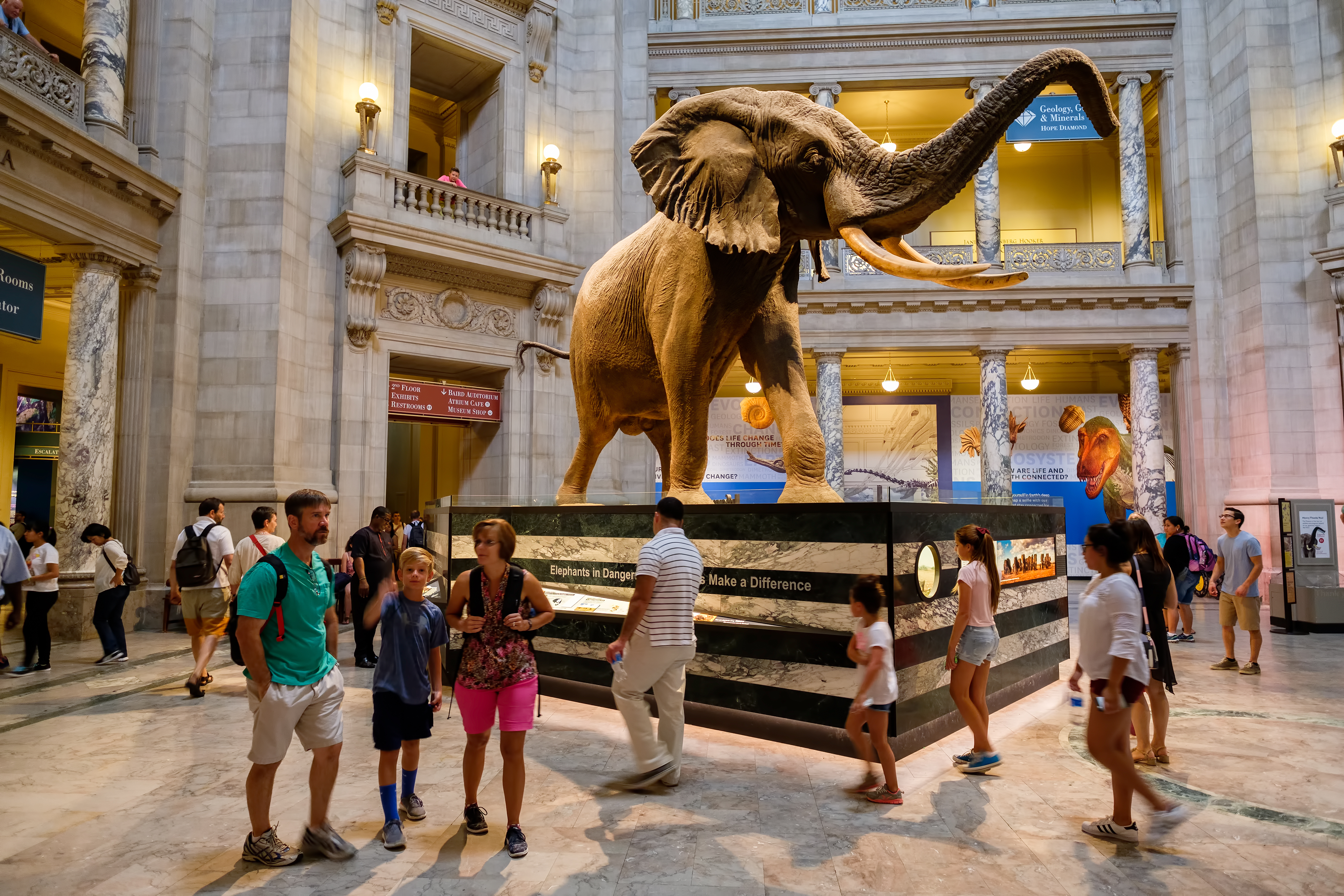 Things to do in Washington, D C : 30 kid-friendly attractions