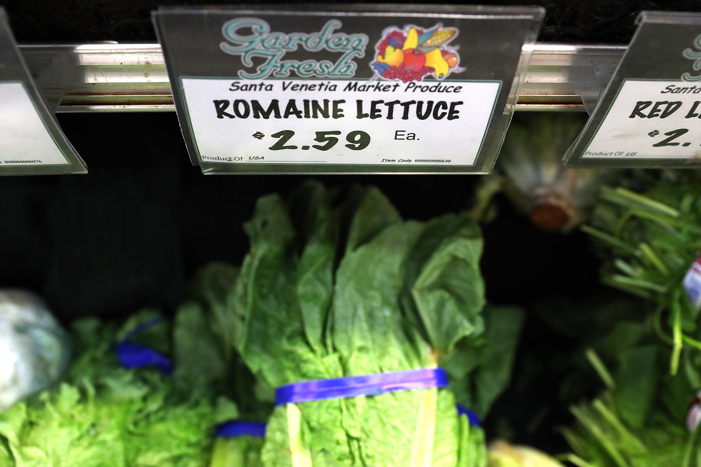 Romaine lettuce in a supermarket