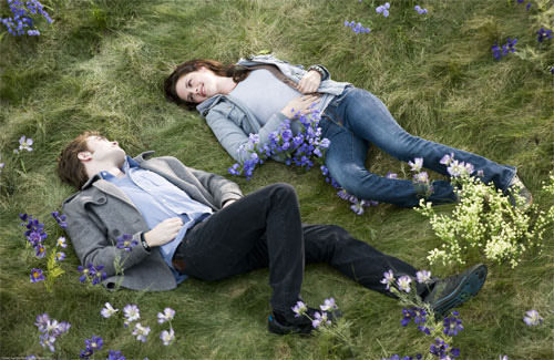 Bella and Edward lie in a meadow of wildflowers