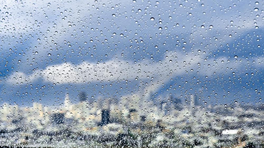 Rain on a windowpane, turning the SF skyline outside into a blurred smear.