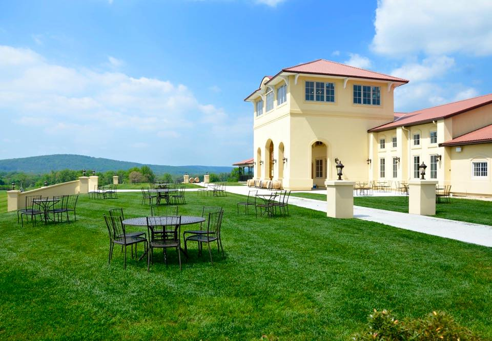 10 dog friendly wineries in virginia and maryland