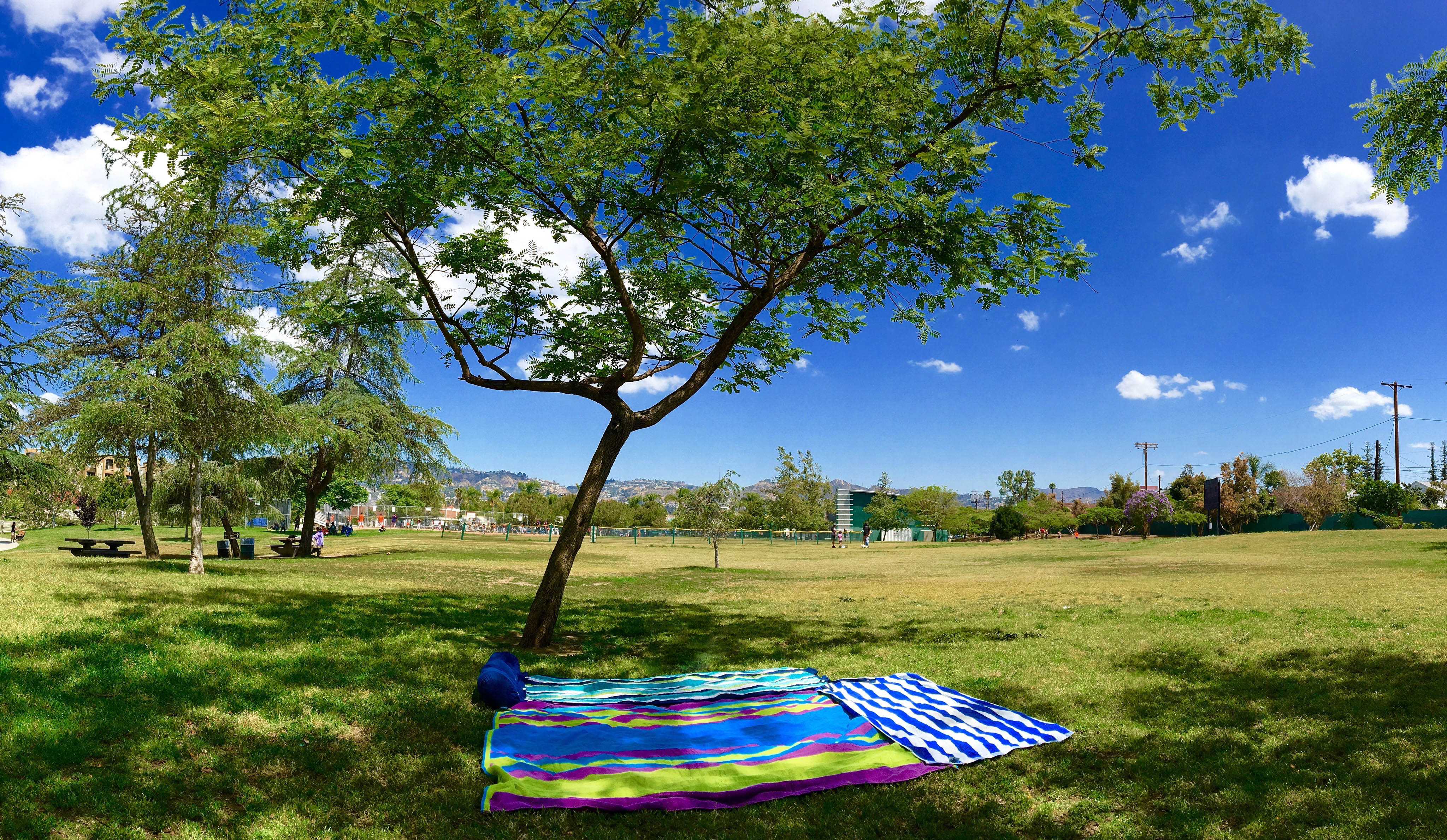Los Angeles picnic spots: 20 of the best places to lay out a