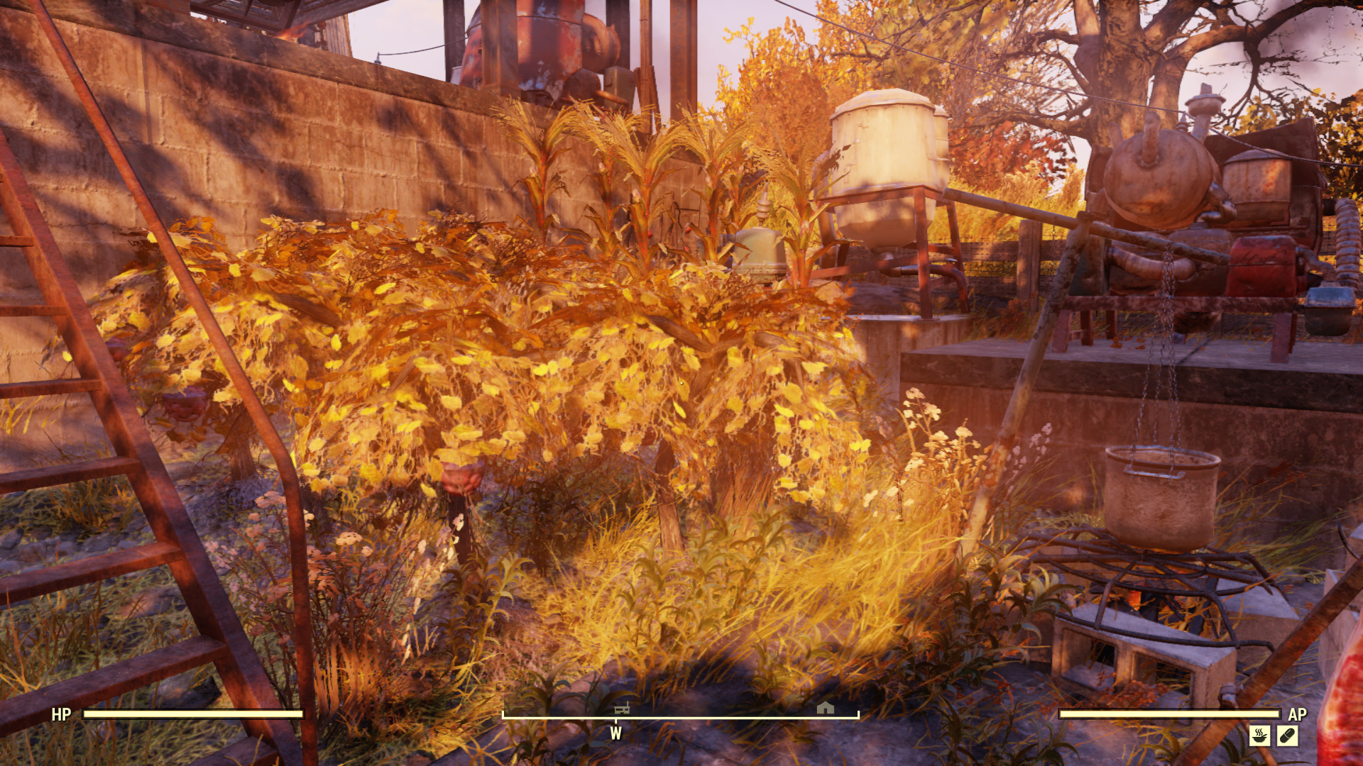 Fallout 76 Guide: How to make an Adhesive farm