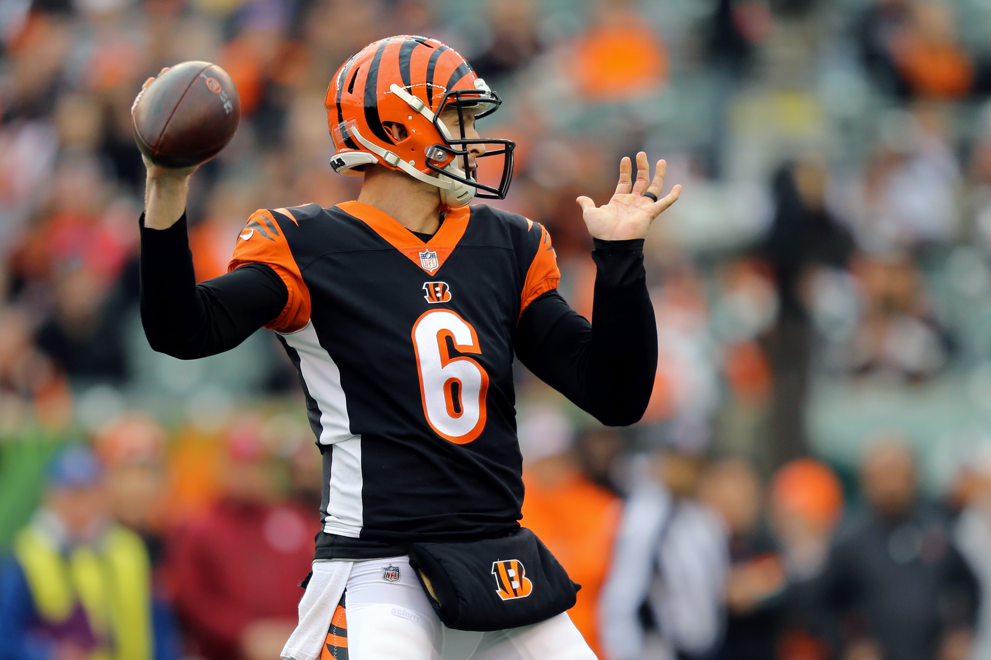 timeless design 9b08f 1b1e8 What happens if Jeff Driskel succeeds in the Bengals' final ...