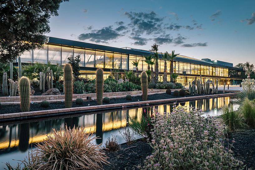 Madrid's massive 'Desert City' complex celebrates all things cacti