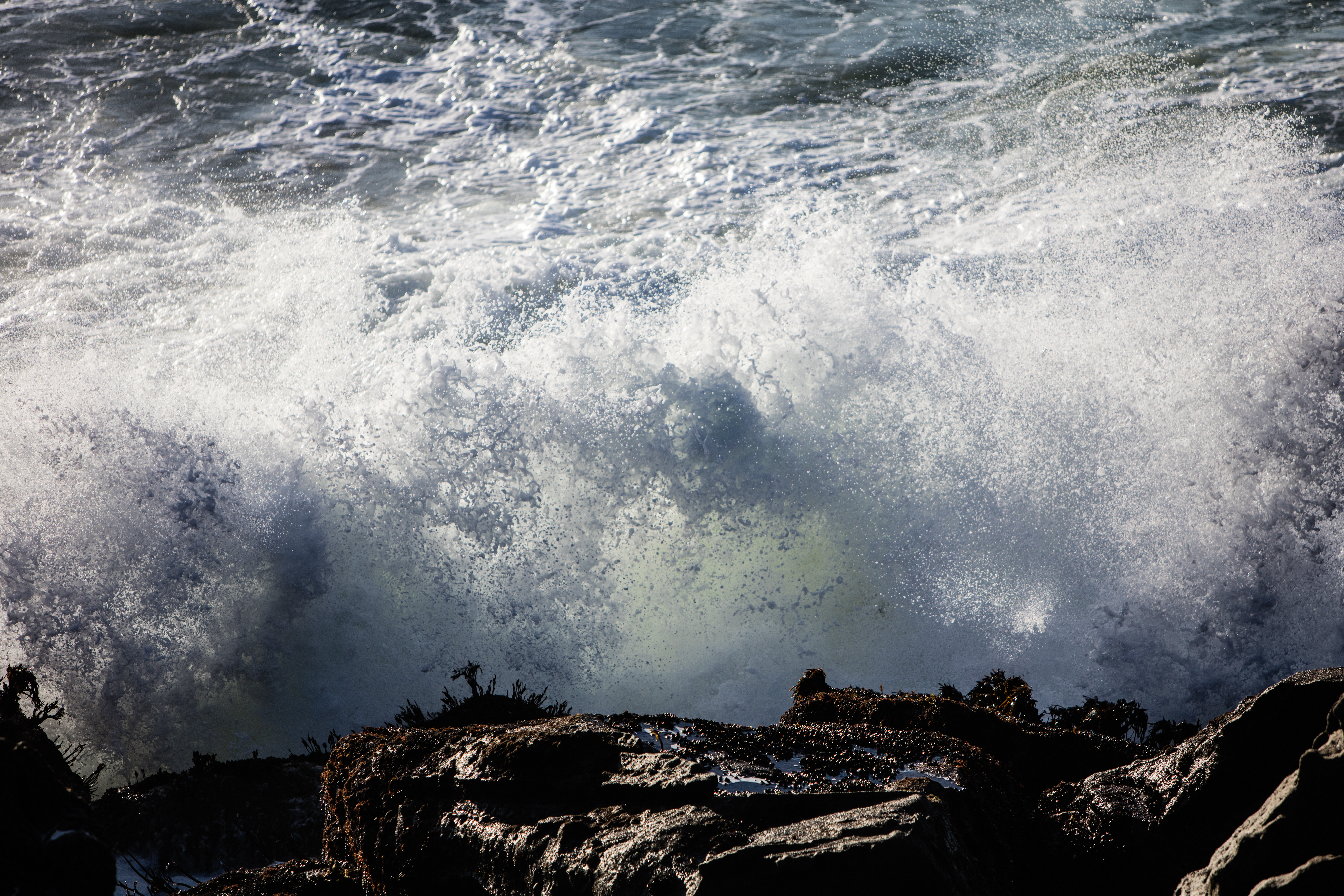 Dangerous 50-foot waves forecast for Bay Area beaches this weekend