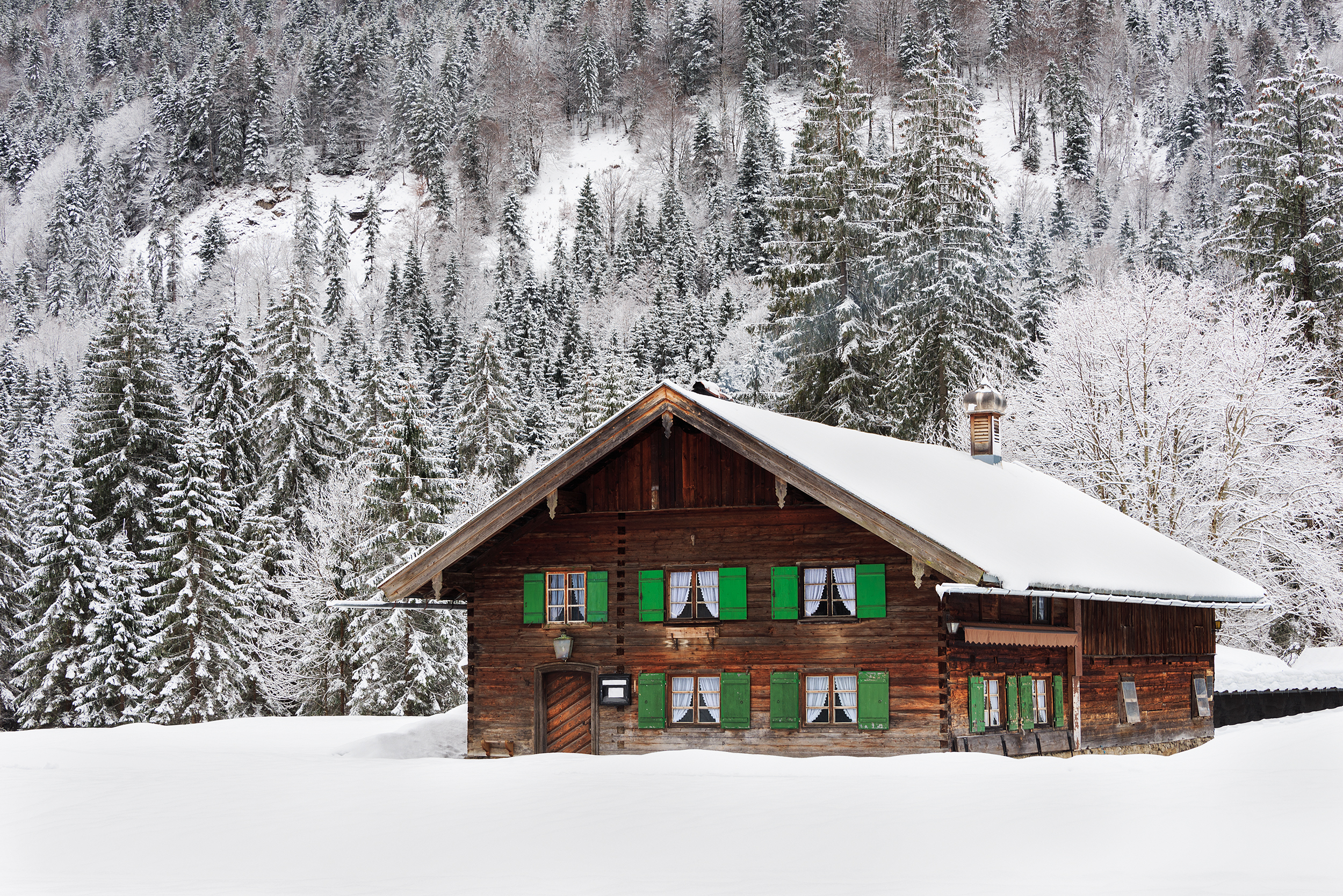 A ski cabin with a brown wooden exterior and green decorative details. The cabin is in the foreground and there are trees on the side of a mountain in the background. There is snow on the ground and on the trees.