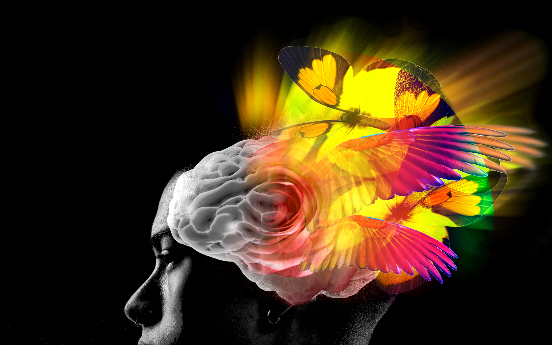 A photo illustration of a human brain with psychedelic thoughts.