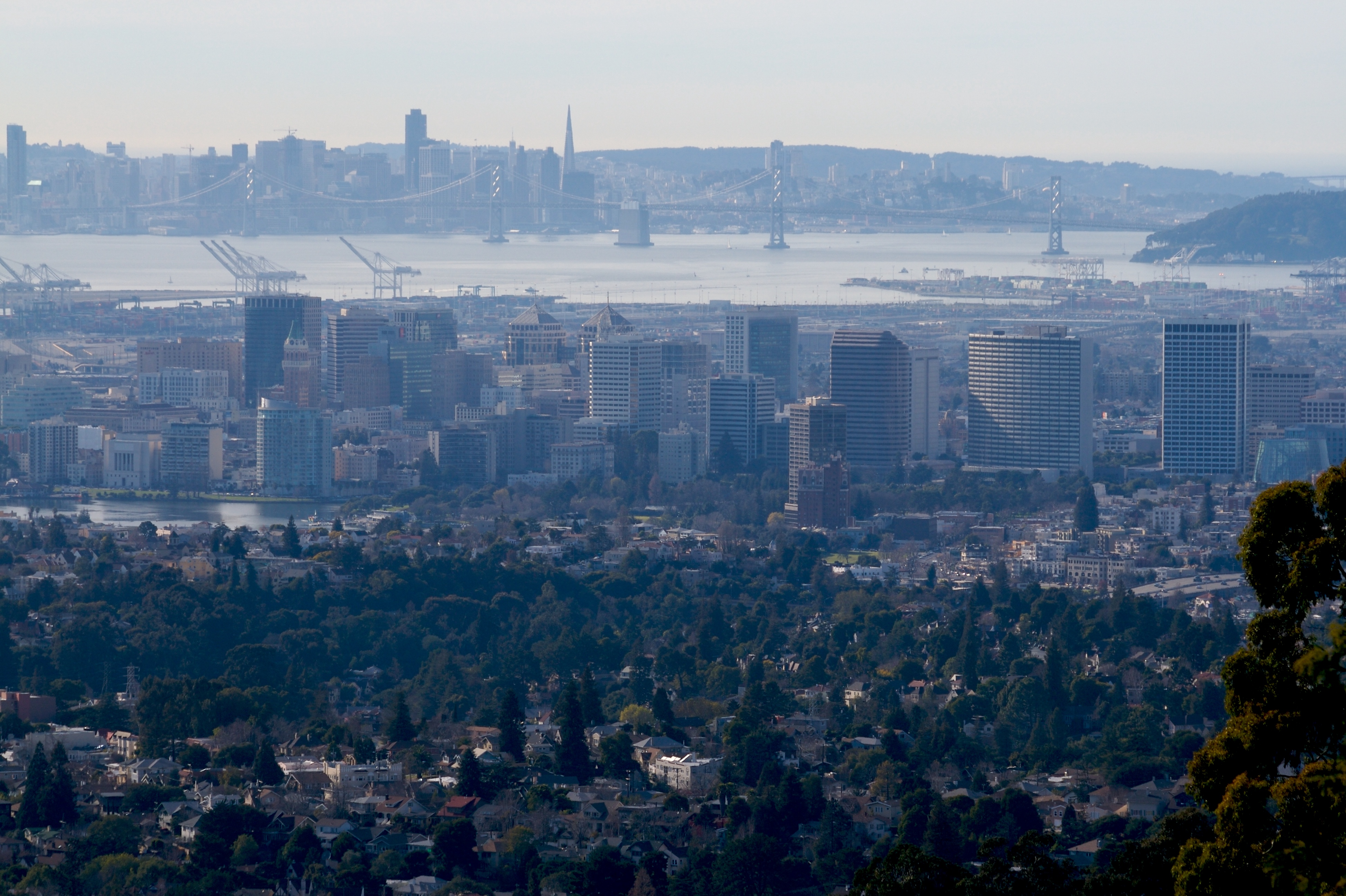 A photo of Oakland taken from the hills, facing San Francisco