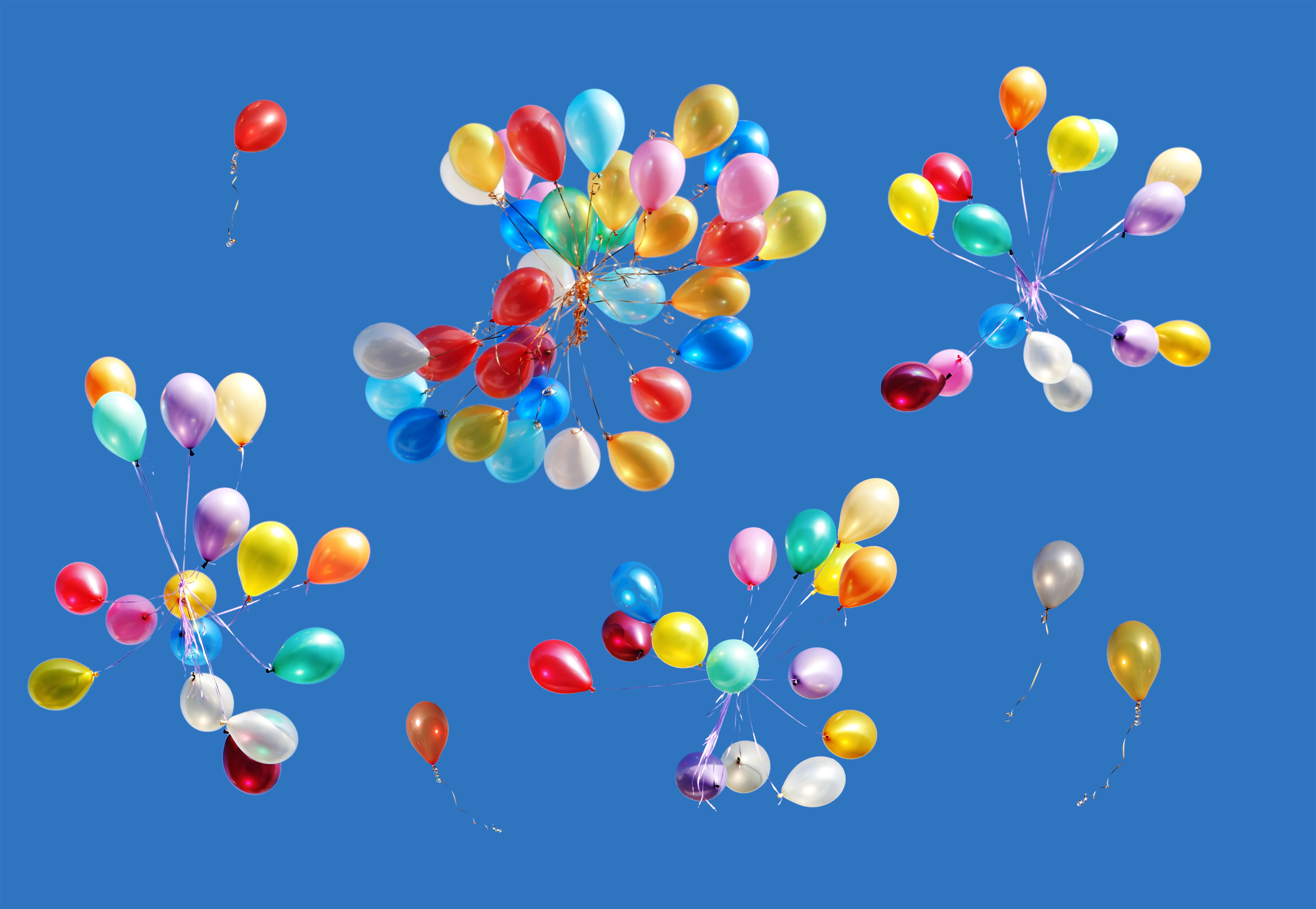 East Hampton Town might ban the intentional release of balloons to protect wildlife