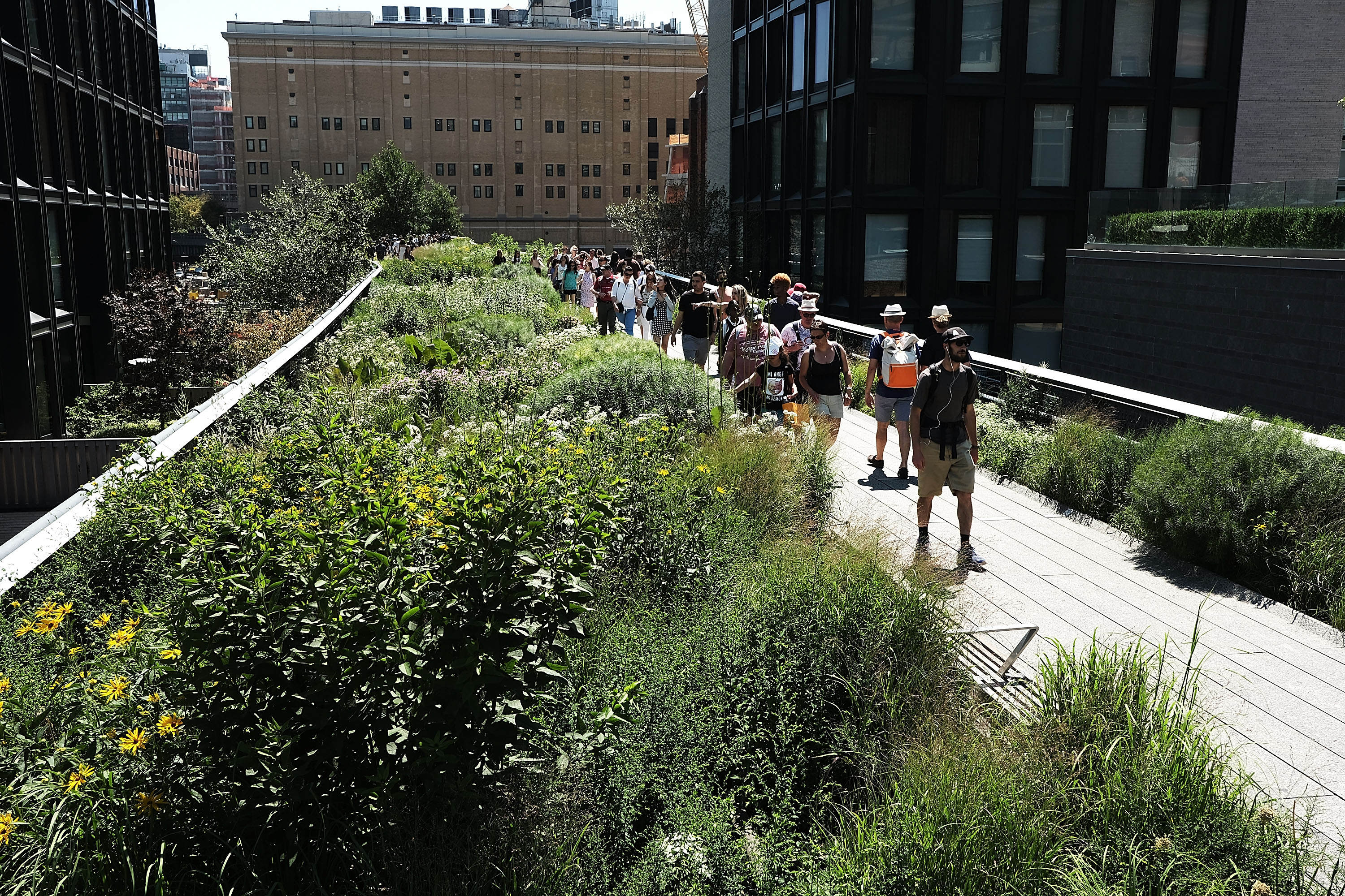 Tourists And Locals Alike Enjoy Summer On New York's High Line