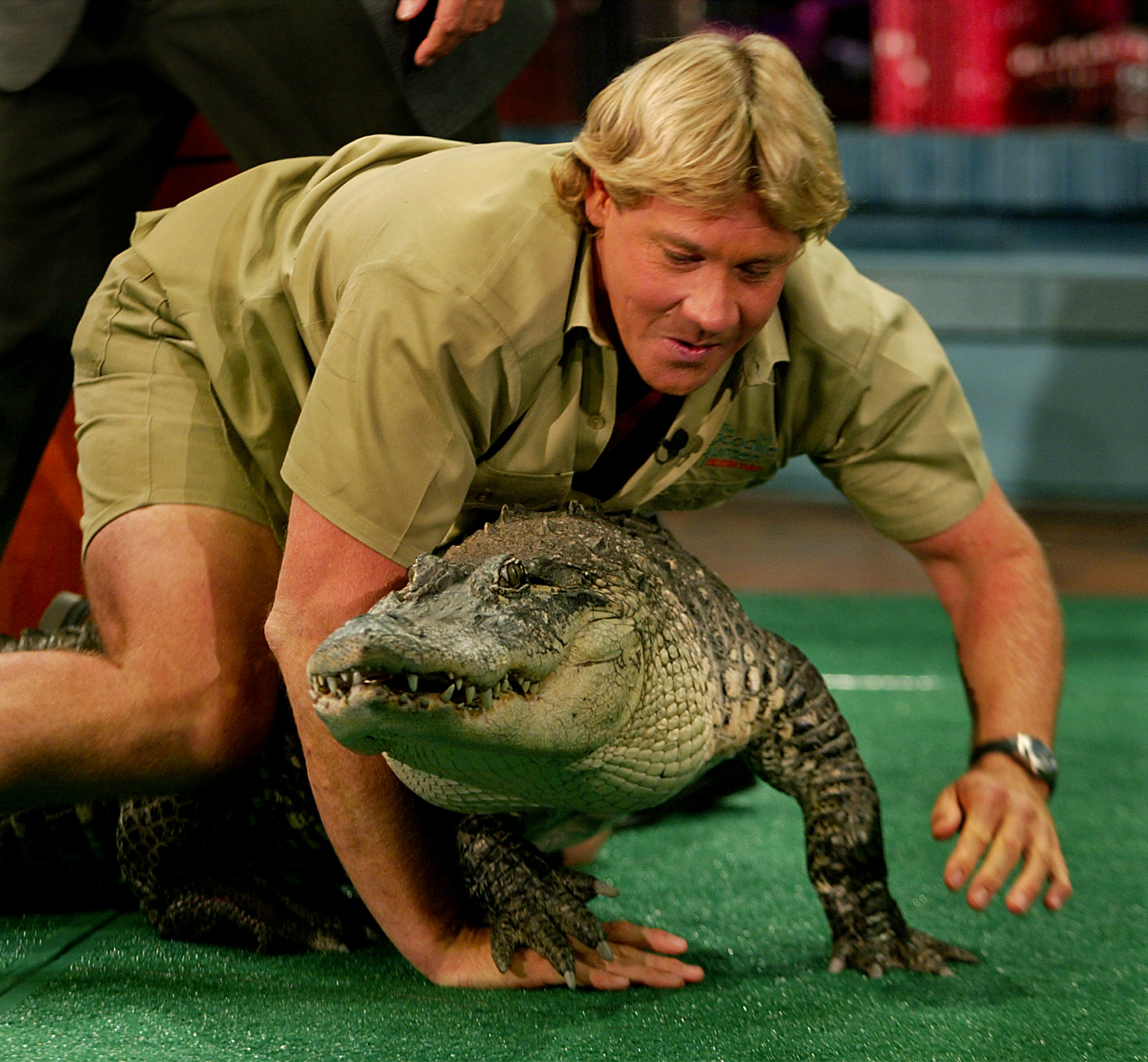 "Steve Irwin said, ""My mission ... is to save wildlife."" He did."