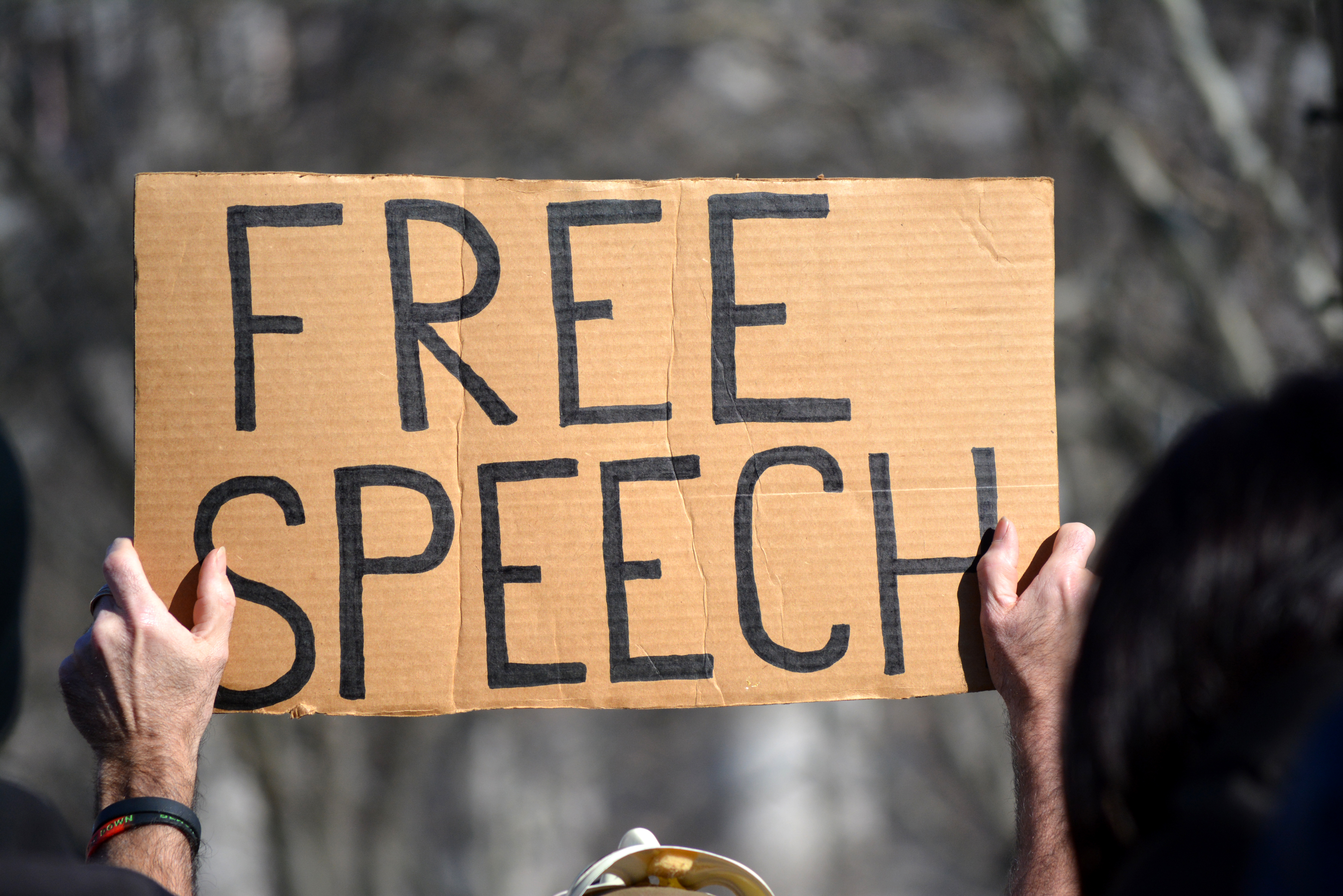 A philosopher makes the case against free speech