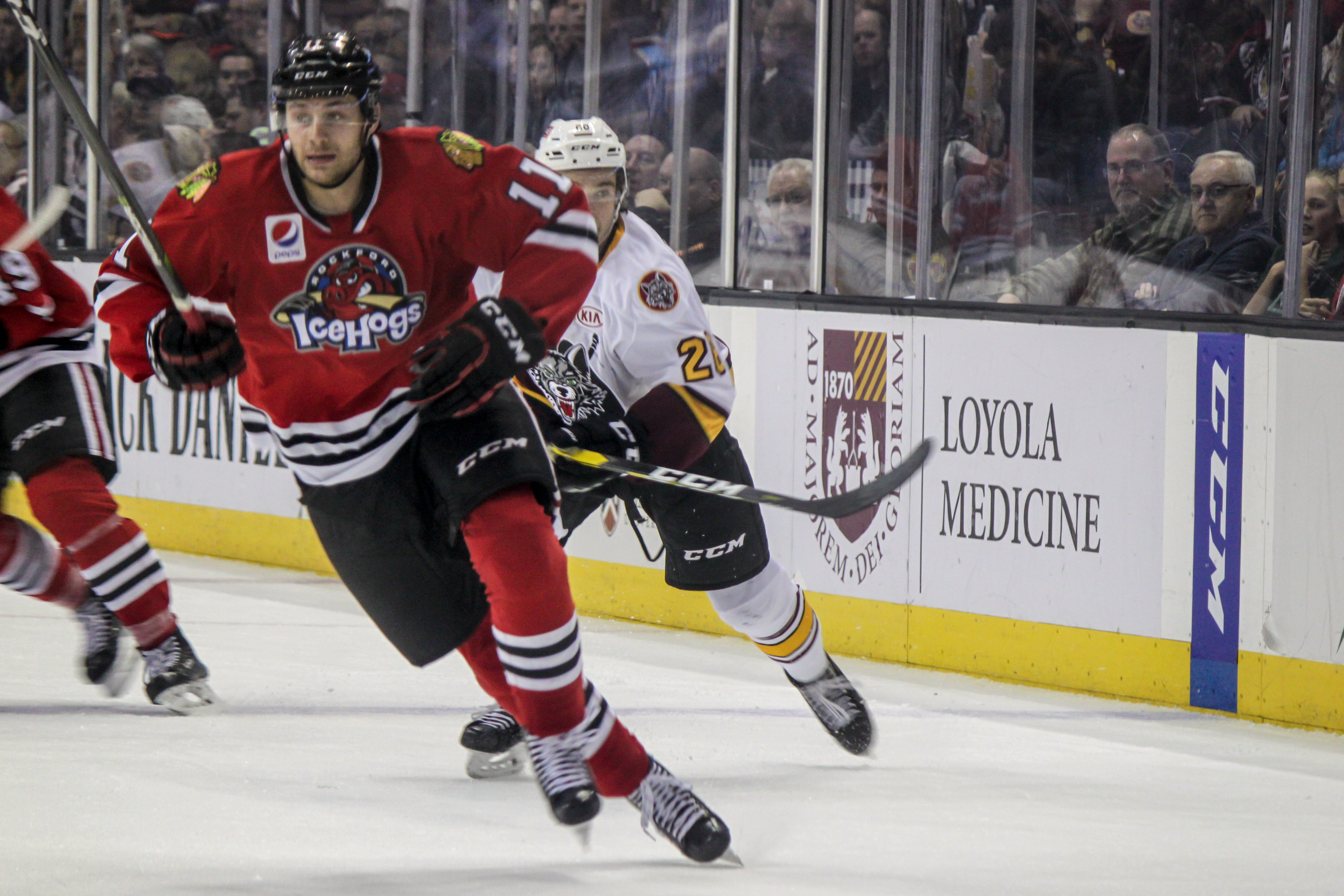 Matheson Iacopelli, Rockford IceHogs forward, plays against the Chicago Wolves; Rosemont, IL, November 10, 2018