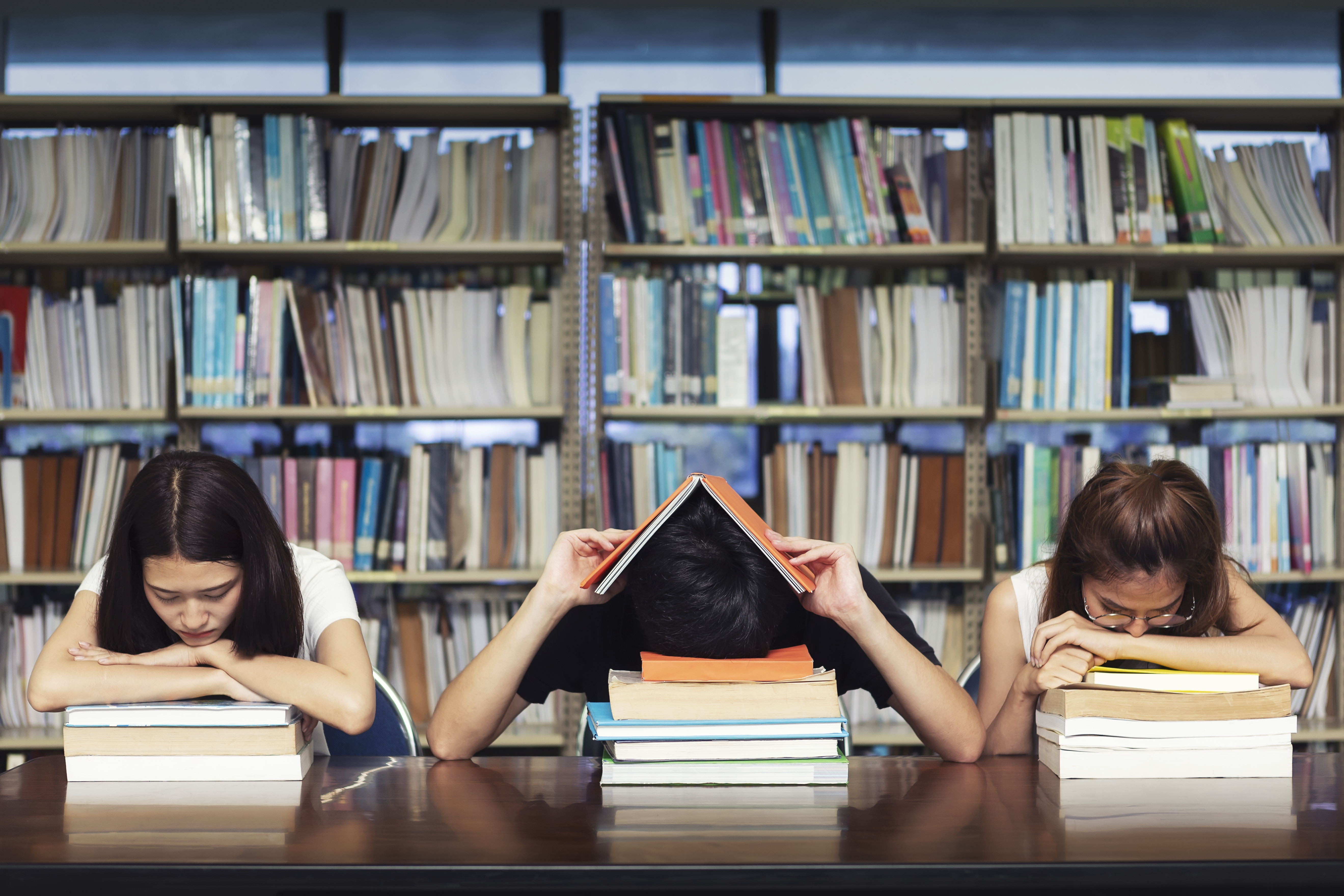 The high cost of college textbooks, explained