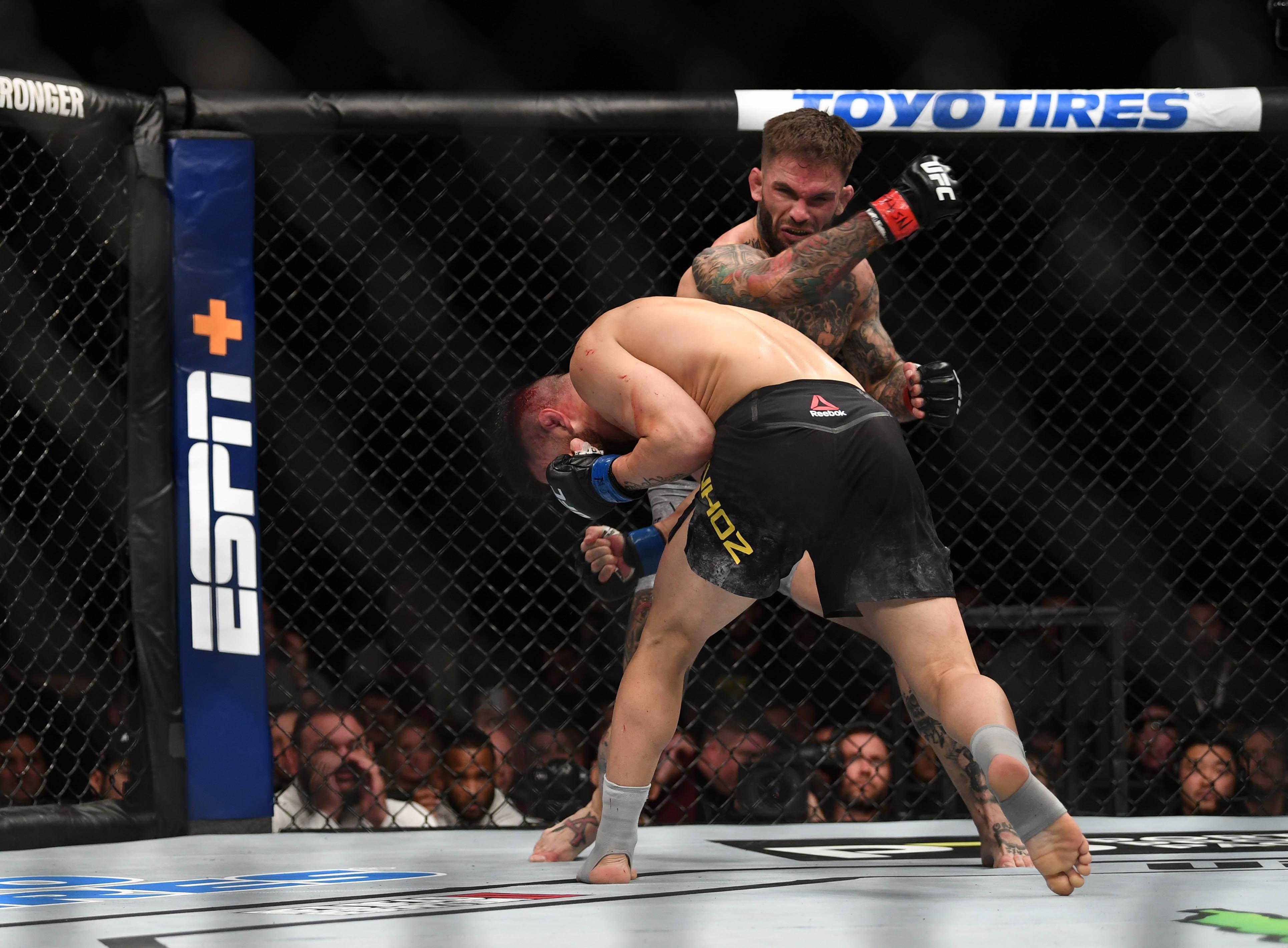 MMA: UFC 235-Garbrandt vs Munhoz